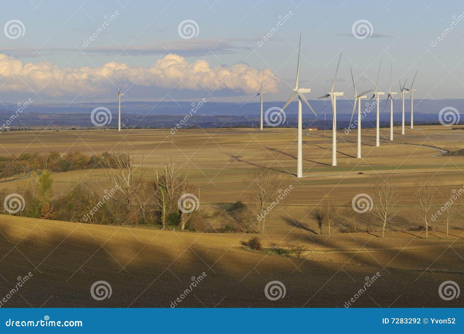 Campo de la energía