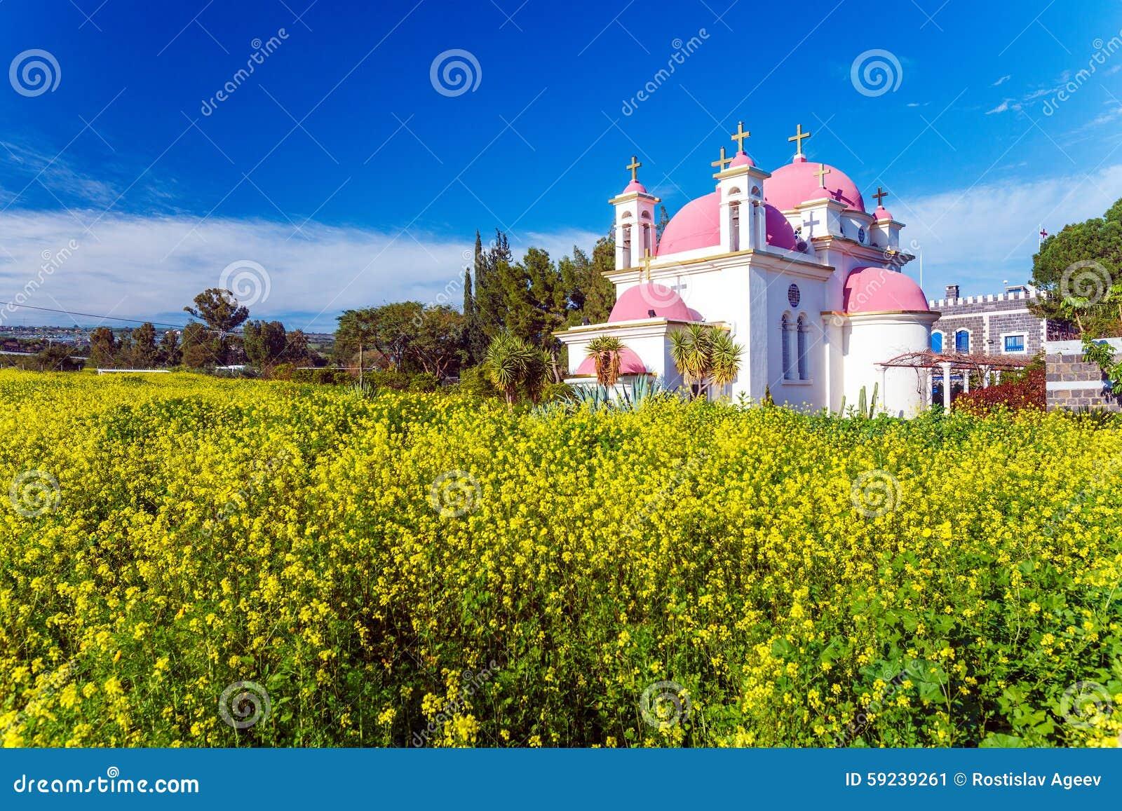 Campo de la iglesia ortodoxa y de la mostaza cerca del mar de Galilea