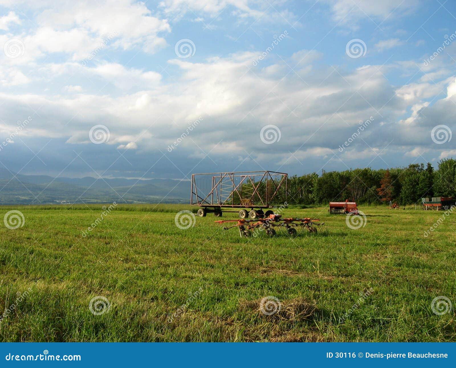 Download Campo de Quebec foto de archivo. Imagen de herramientas - 30116