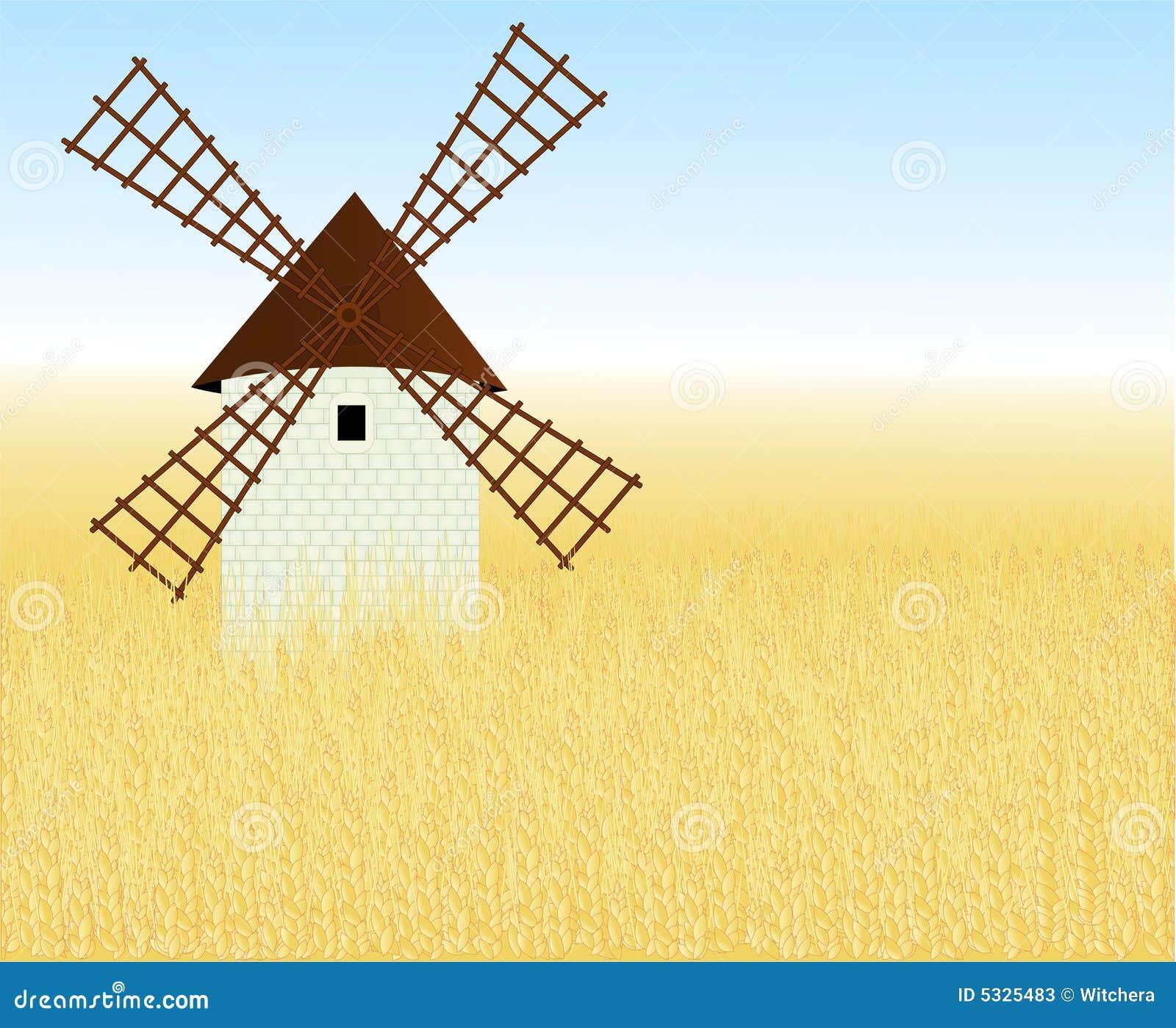 Campo de trigo con un molino fotos de archivo imagen - Molino de trigo ...