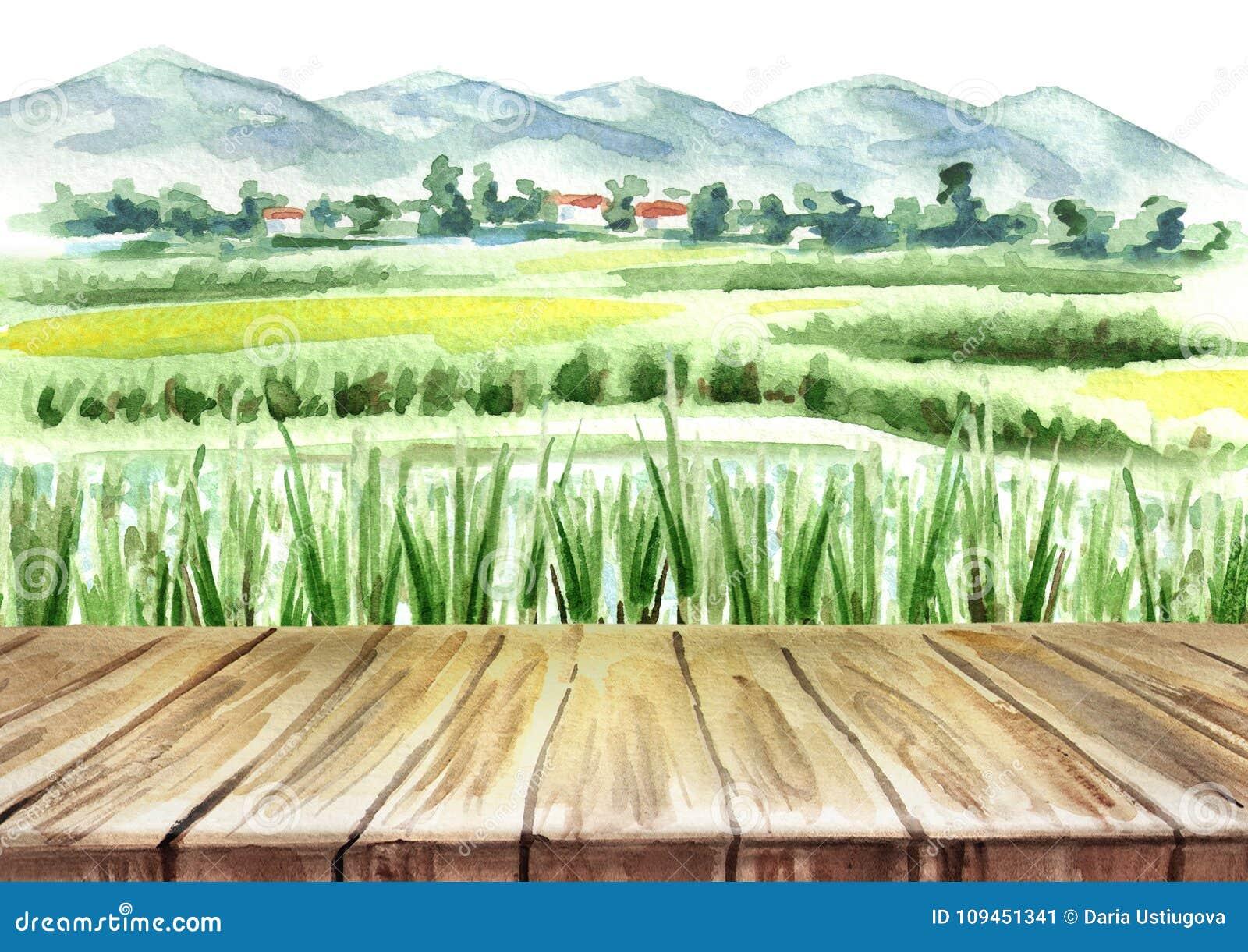 Campo del arroz y fondo vacío de la tabla Ejemplo dibujado mano de la acuarela