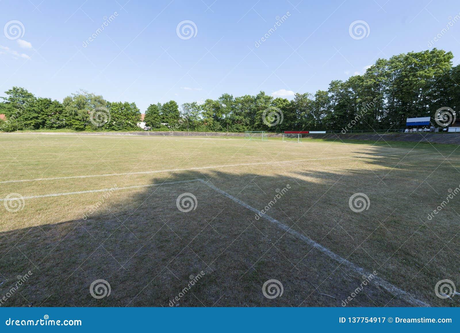 Campo di calcio con gli scopi, gli alberi ed il cielo blu