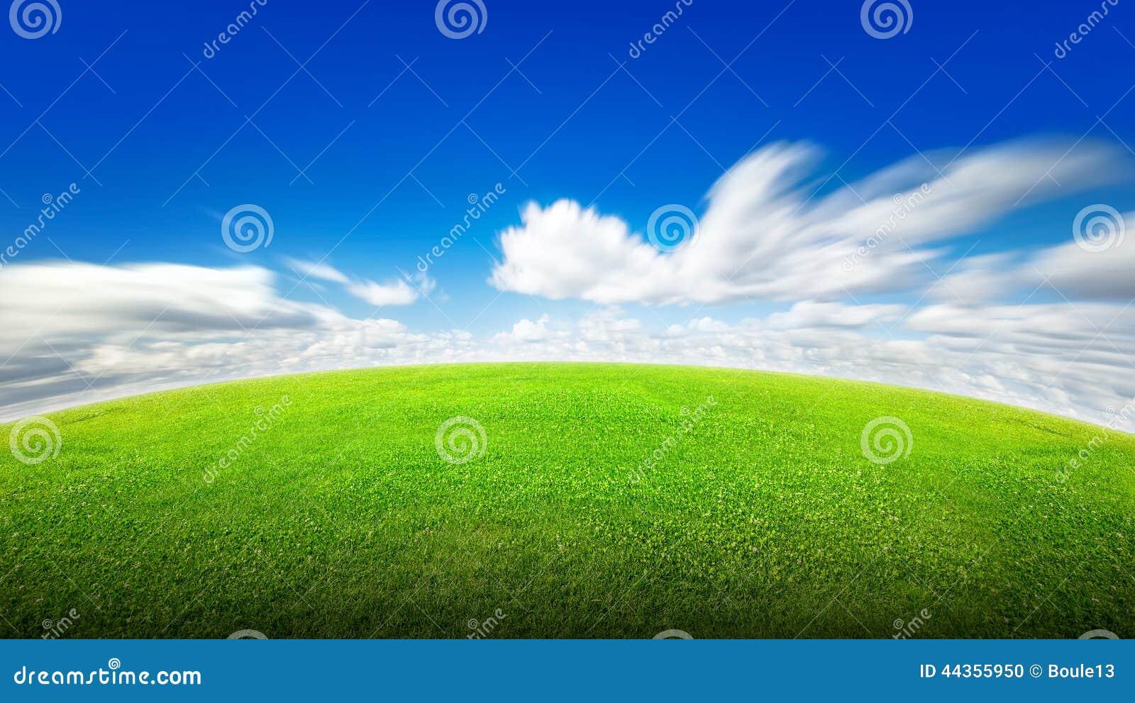 Campo di erba verde e del cielo