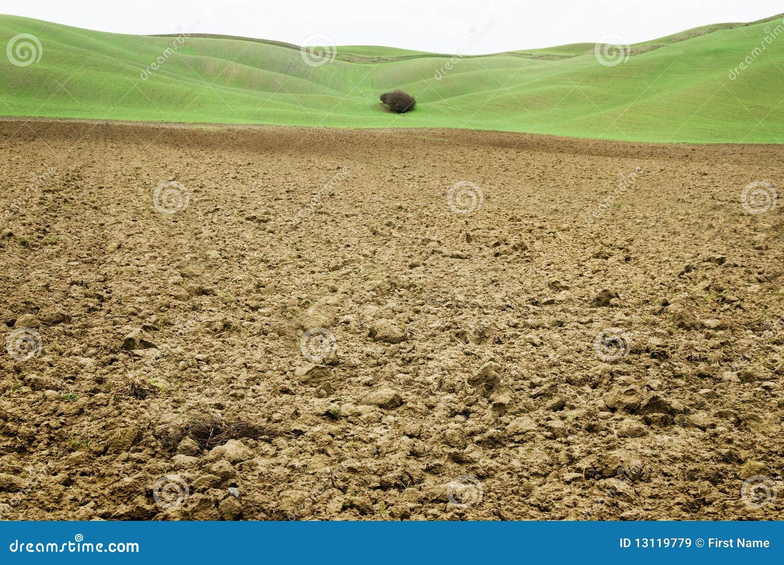 Campo do solo de argila com fundo verde em Toscânia