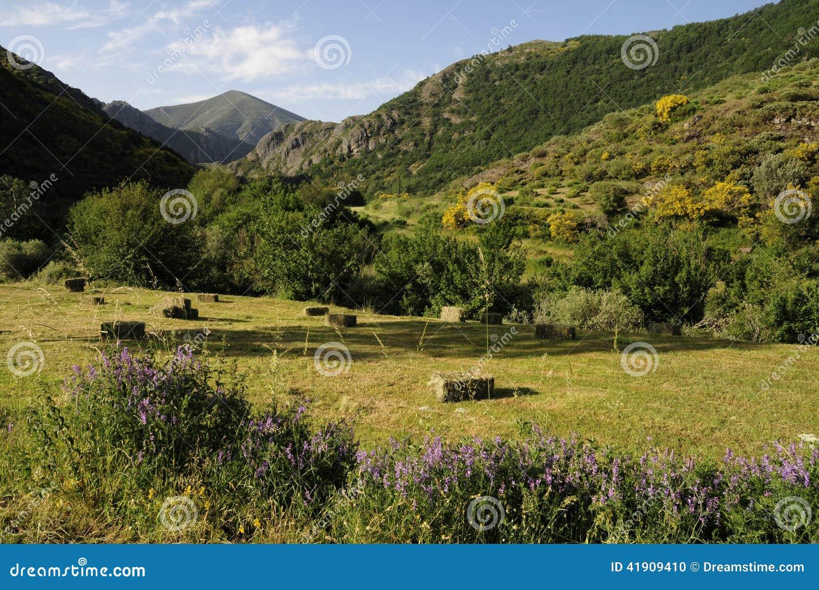 Campo, España