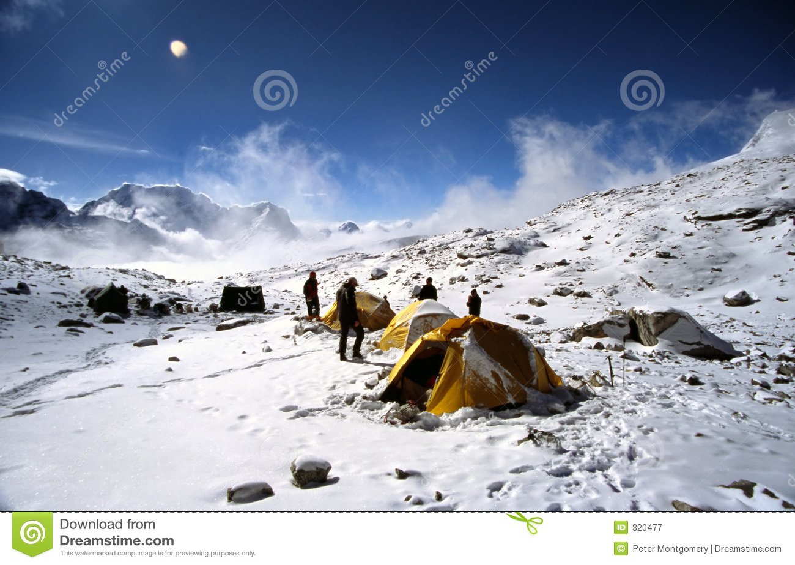 Campo Himalayan
