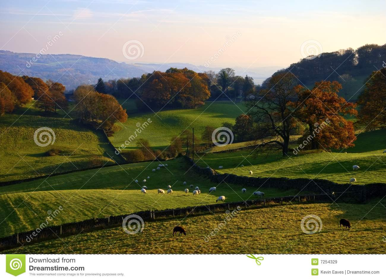 Campo inglés rodante en otoño