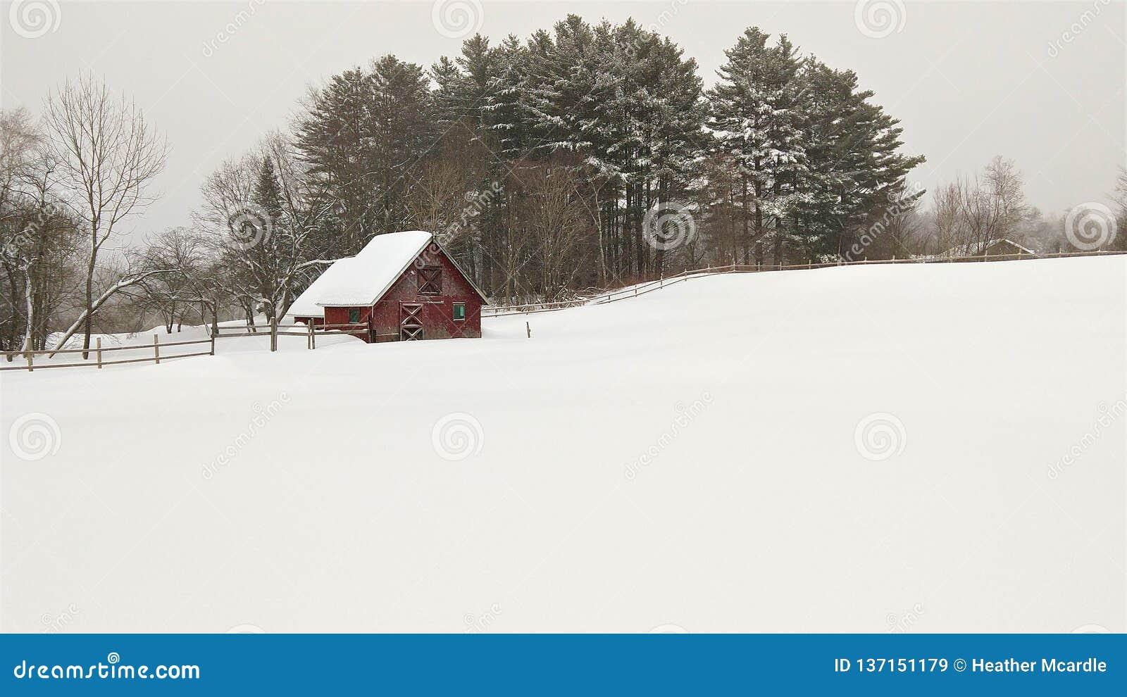 Campo nevado Pristine e celeiro vermelho