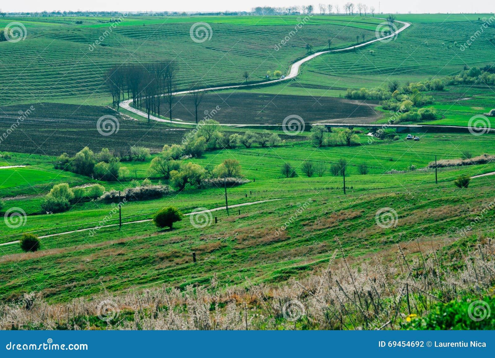 Campo rural del camino