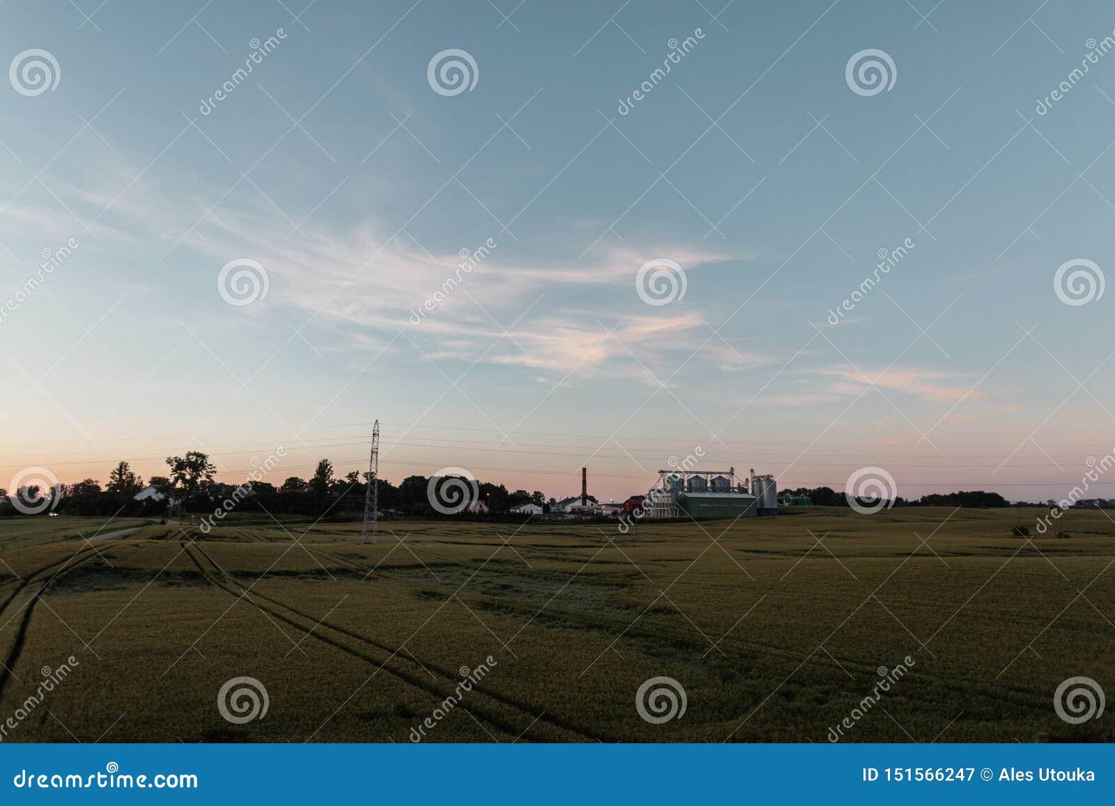 Campo verde con l azienda agricola su un cielo blu del fondo e su un tramonto rosa di estate Resto nel villaggio Paesaggio della