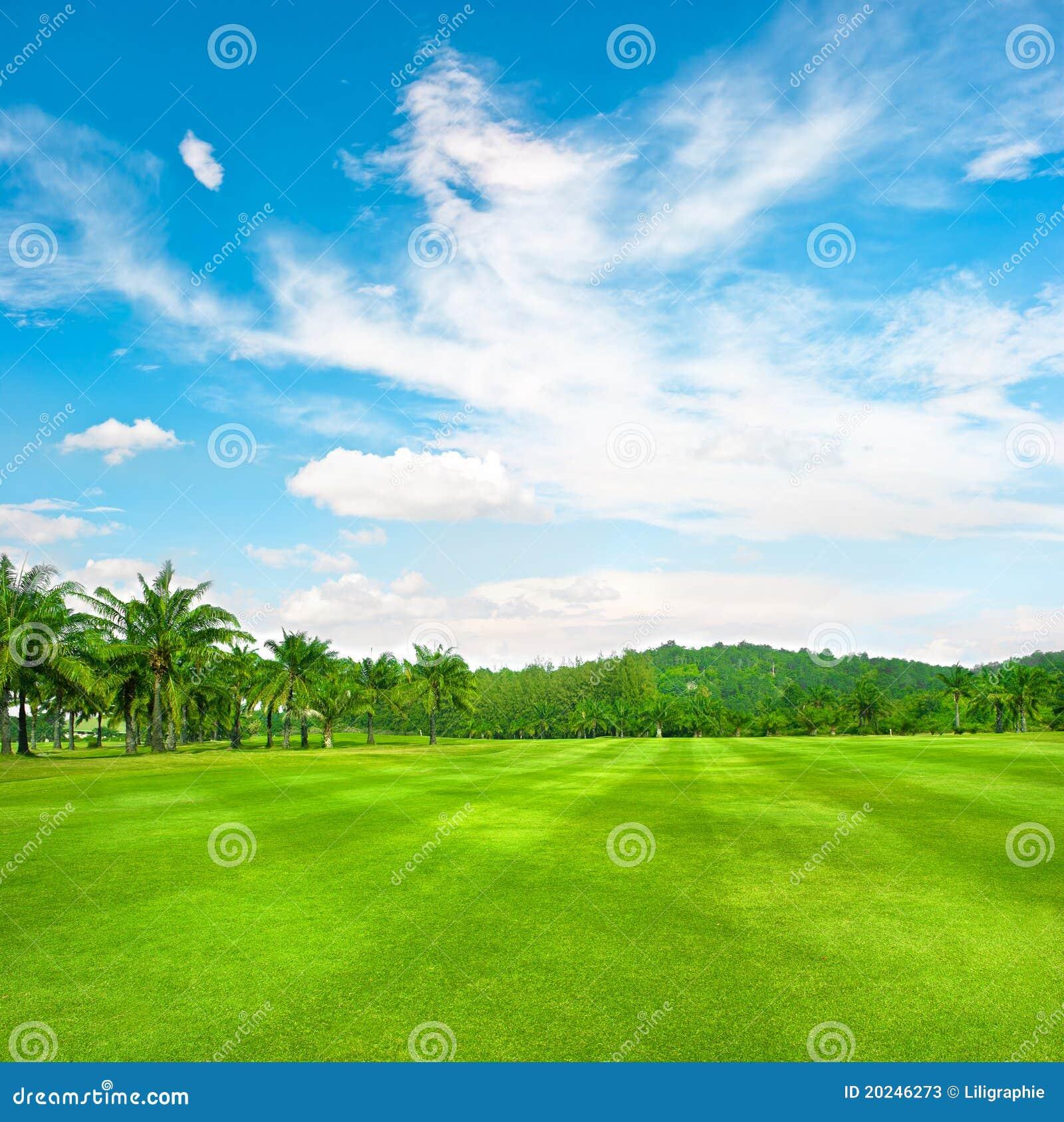 Campo verde del golf con las palmas sobre el cielo nublado