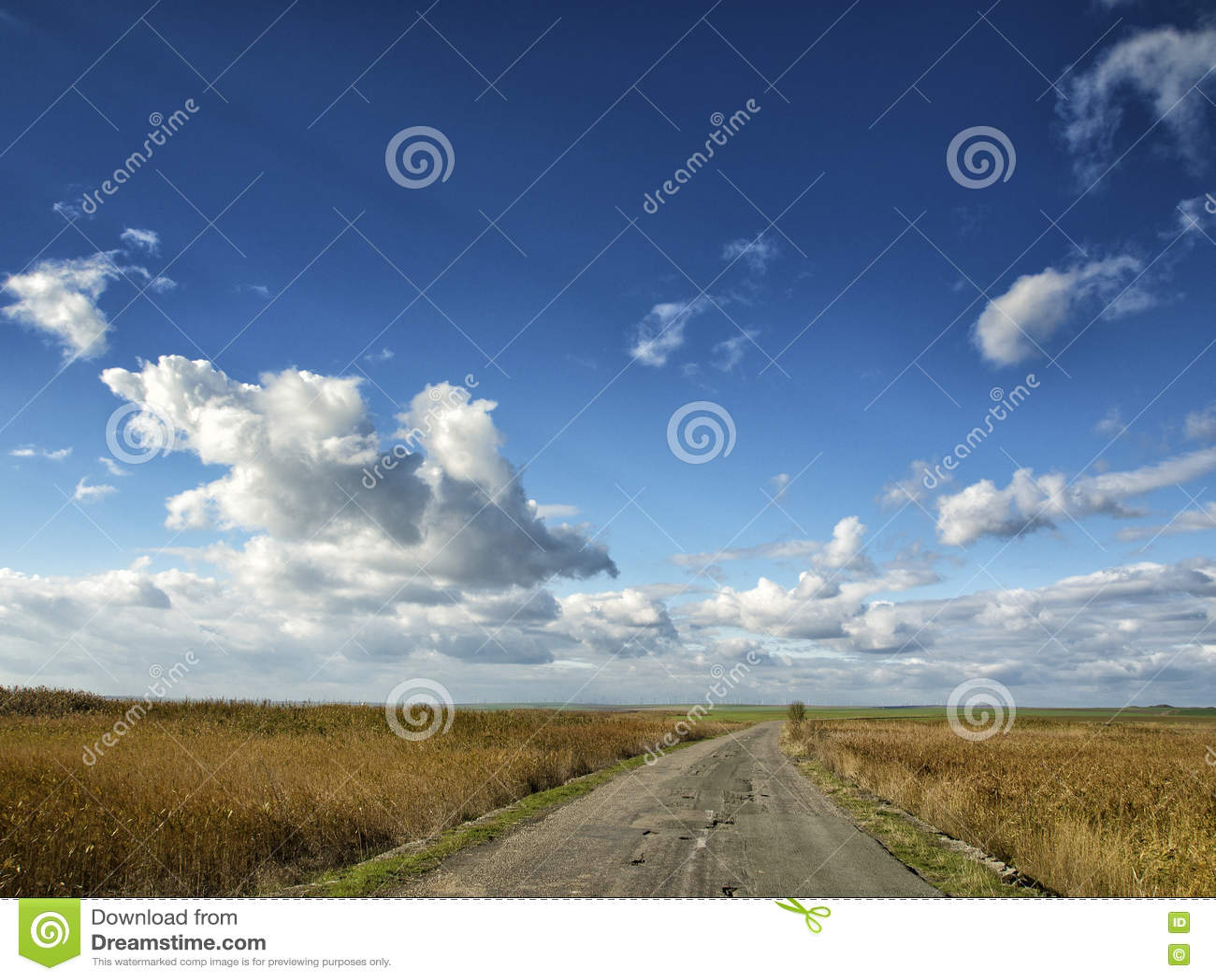 Campos amarelos sob um céu azul dramático com as nuvens brancas próximas a colônia do grego clássico de Histria, nas costas do Ma