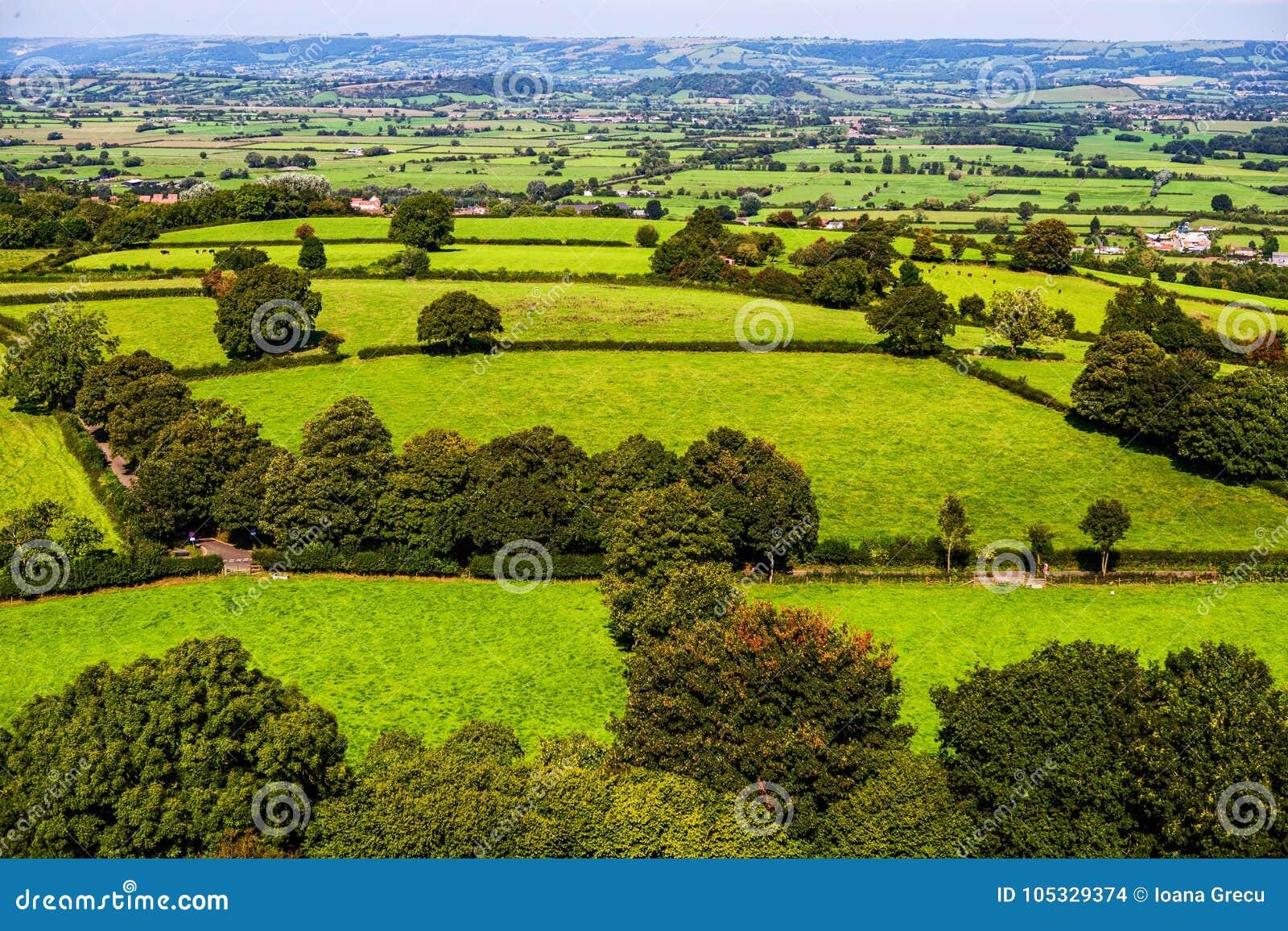 Campos de Glastonbury