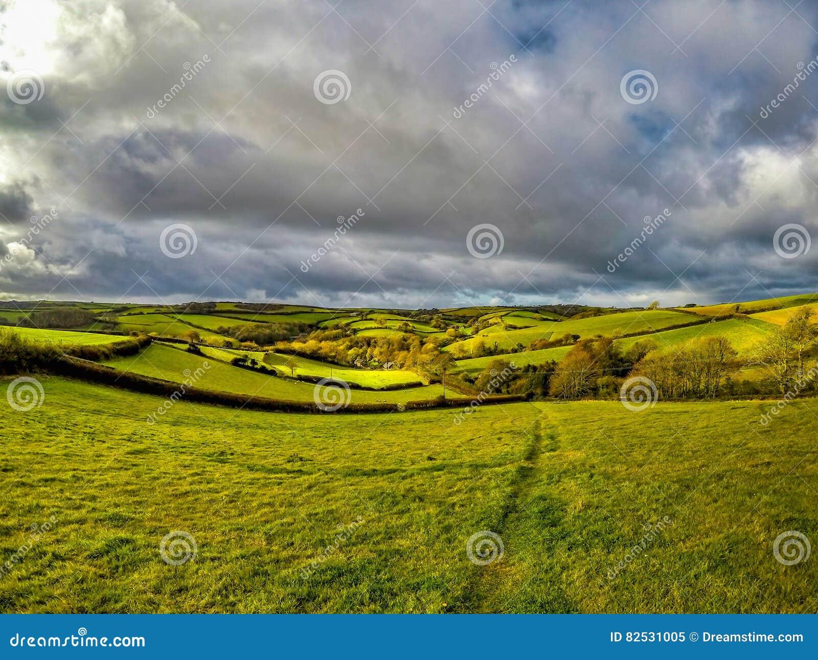 Campos de Inglaterra