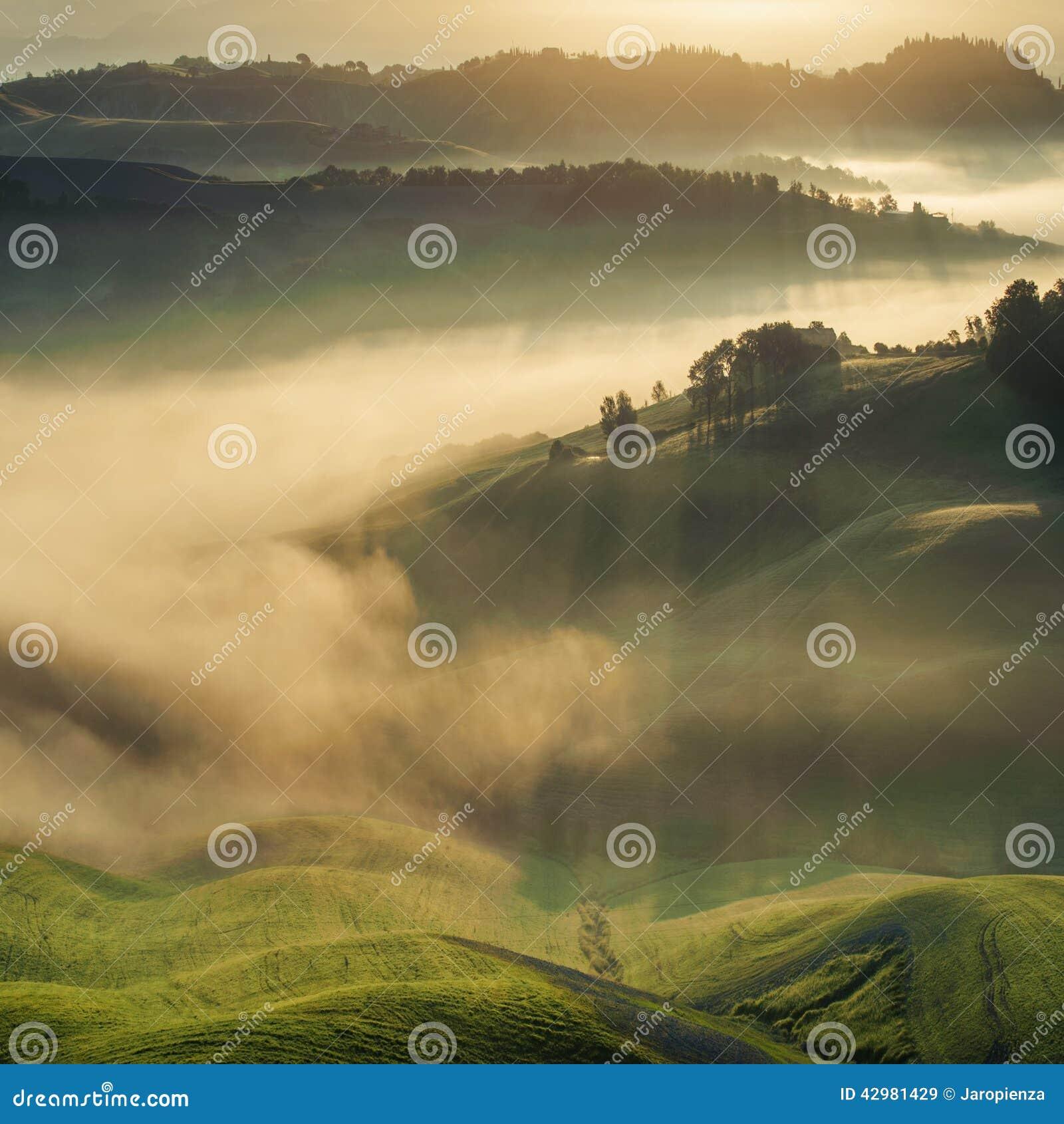 Campos de Tuscan envolvidos na névoa, Itália