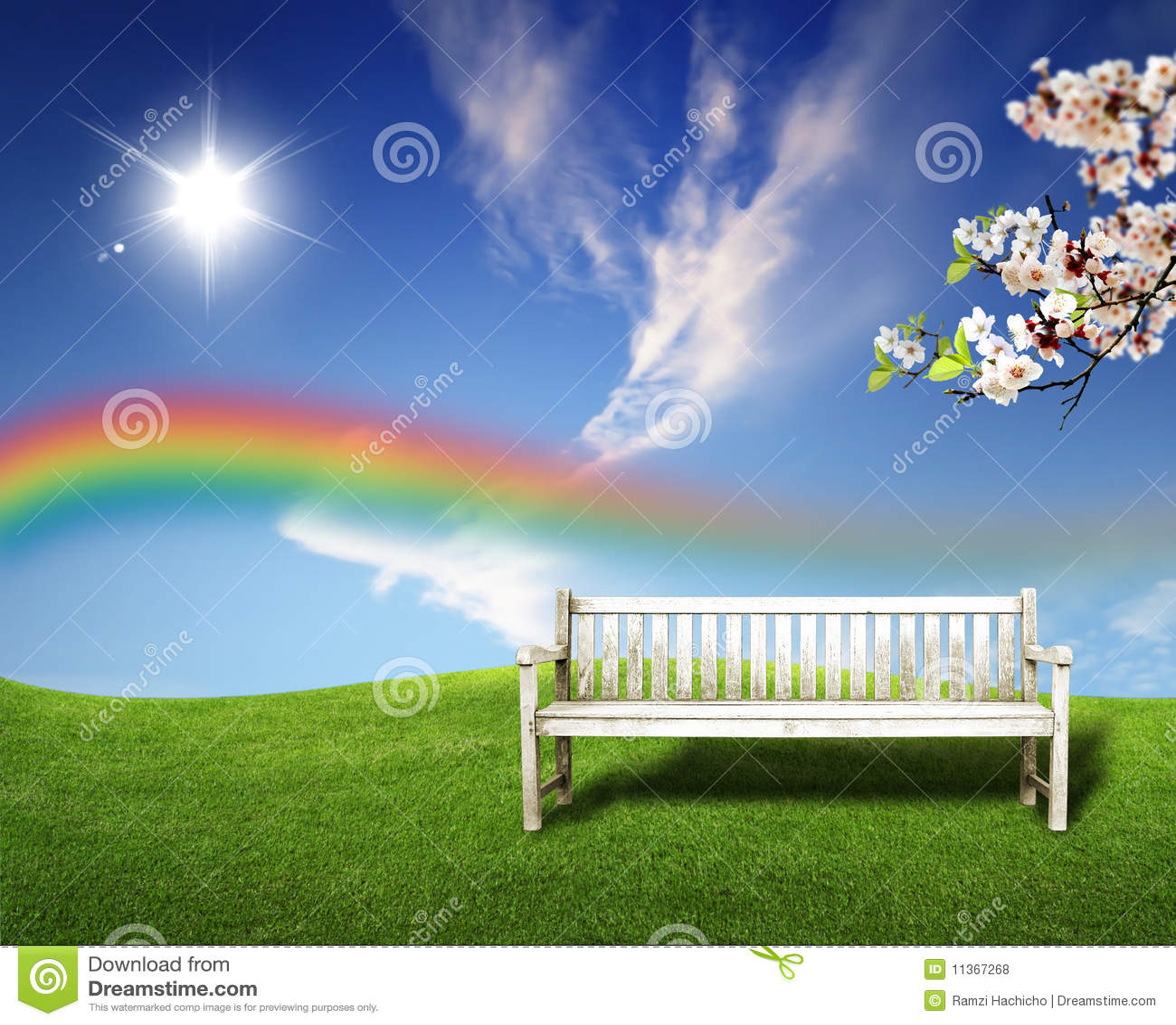 Campos del verde del paisaje del verano y cielo hermoso