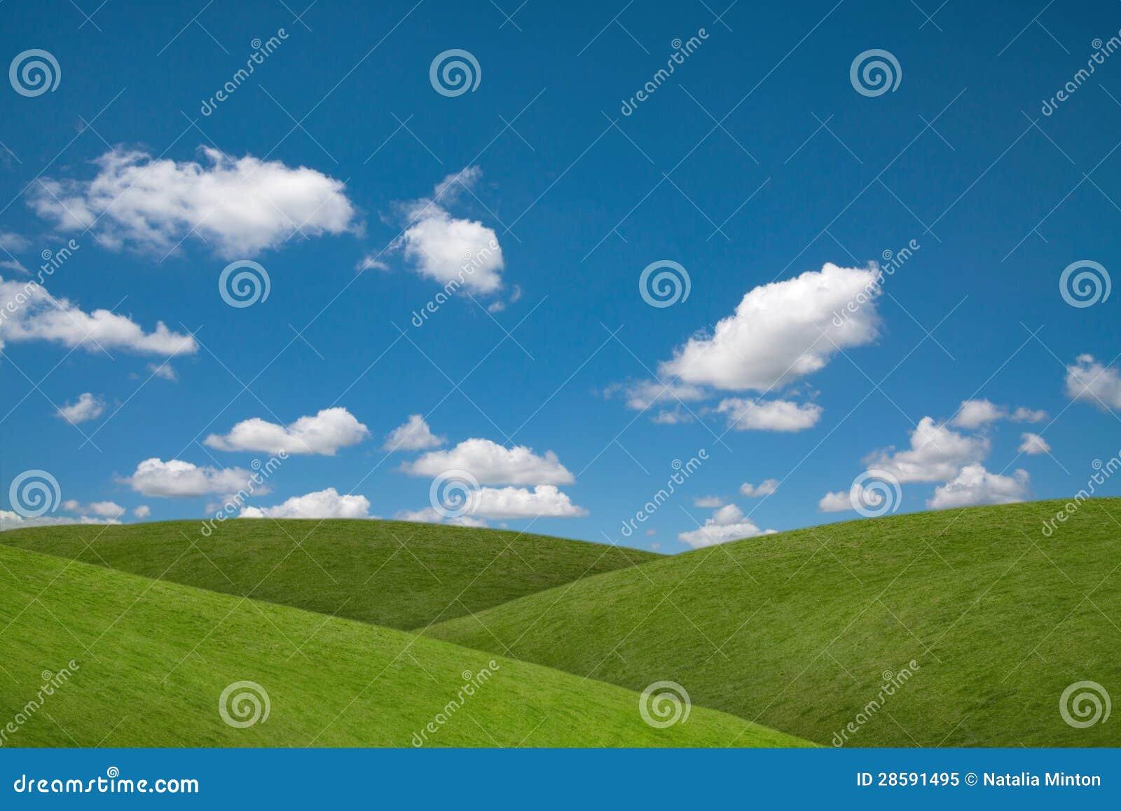 Campos do verde do céu azul
