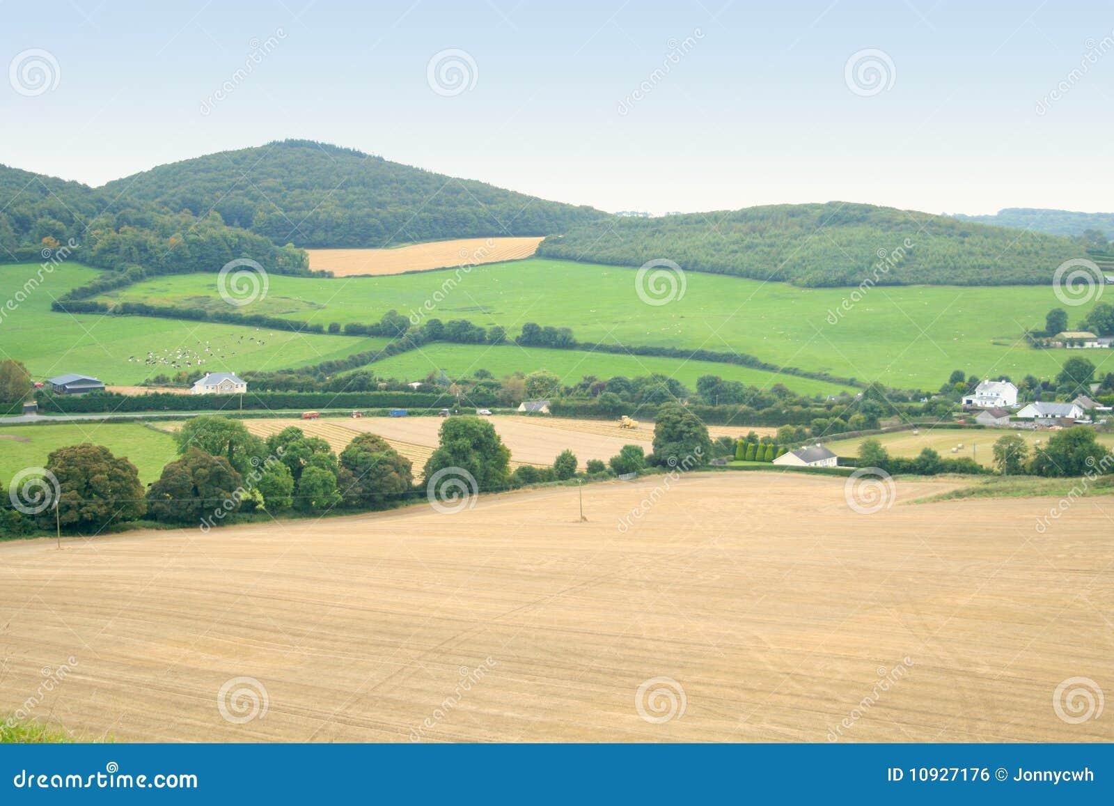 Campos verdes de Irlanda