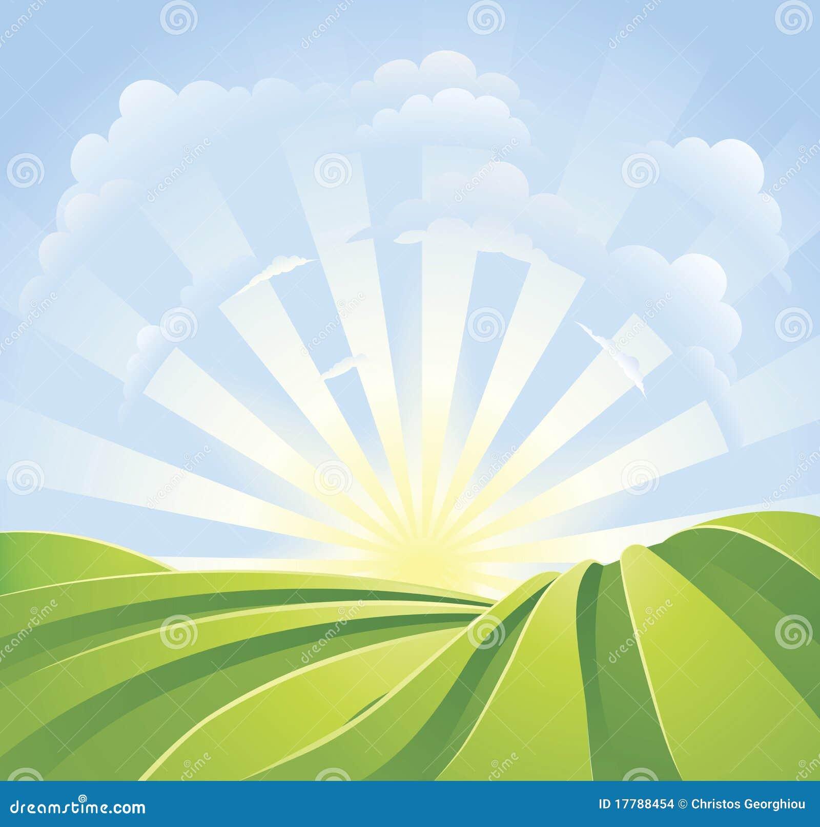 Campos verdes idílicos con los rayos de la sol