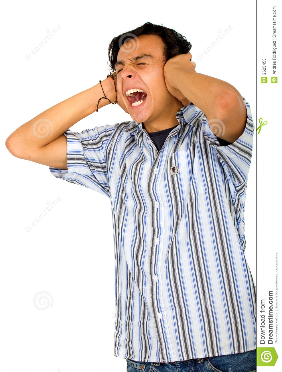 Cant Stand The Noise Stock Photos Image 2623453
