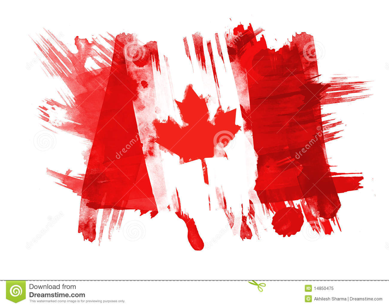 Canada Flag painted