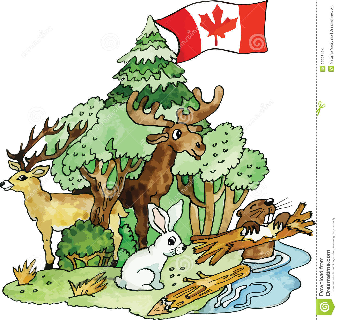 Canadian Animals Vector Illustration Stock Images - Image: 30395104