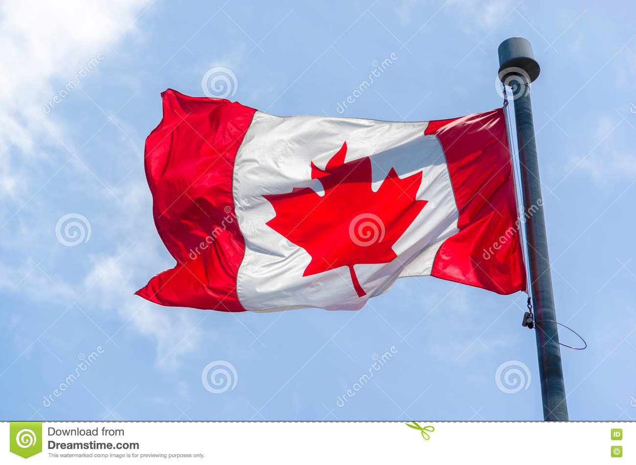 Canadian Flag in the wind over blue sky