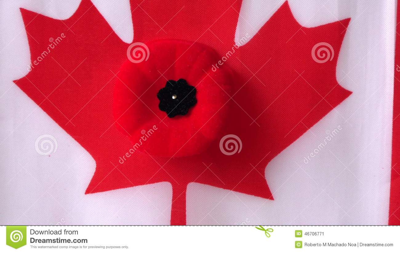 Canadian Poppy And Canada Flag During Remembrance Day Stock Video