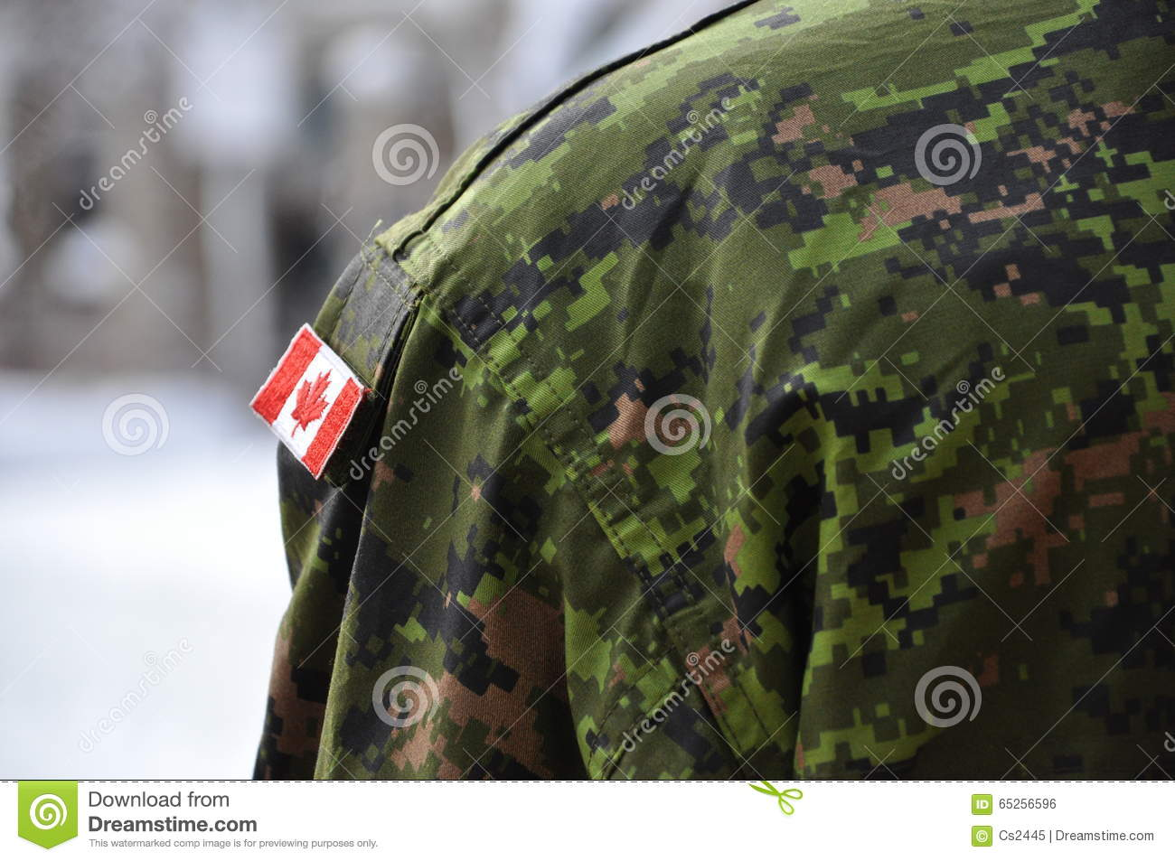 Canadian Soldier Standing Guard