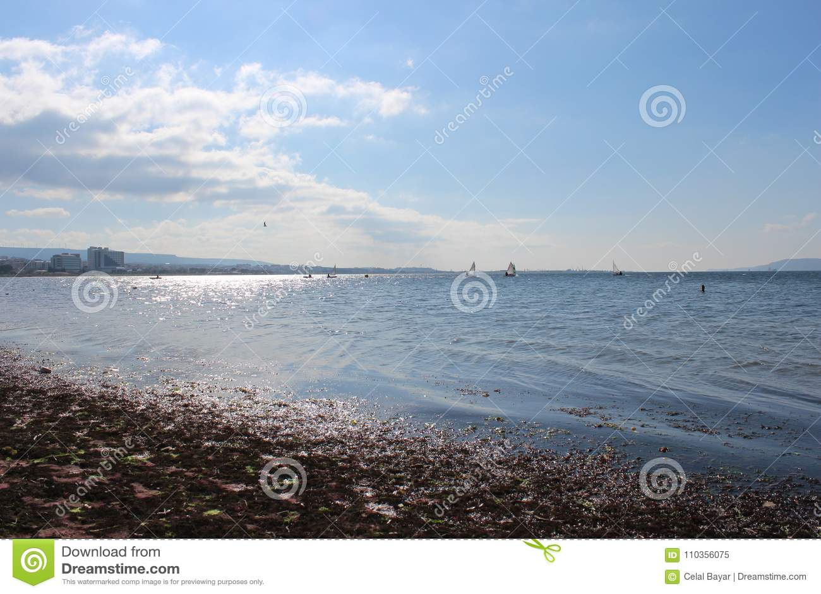 Sea and calm skies coastline