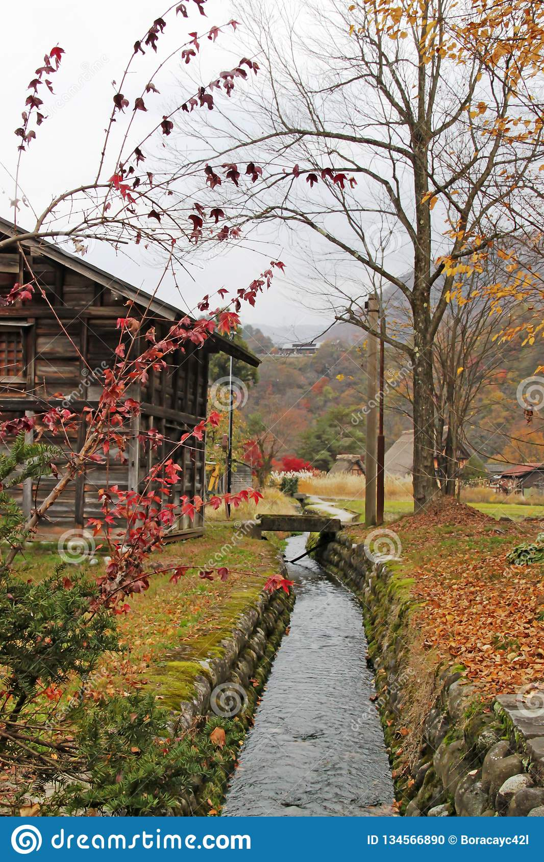 Canal Along Shirakawago Village Stock Photo - Image of ...