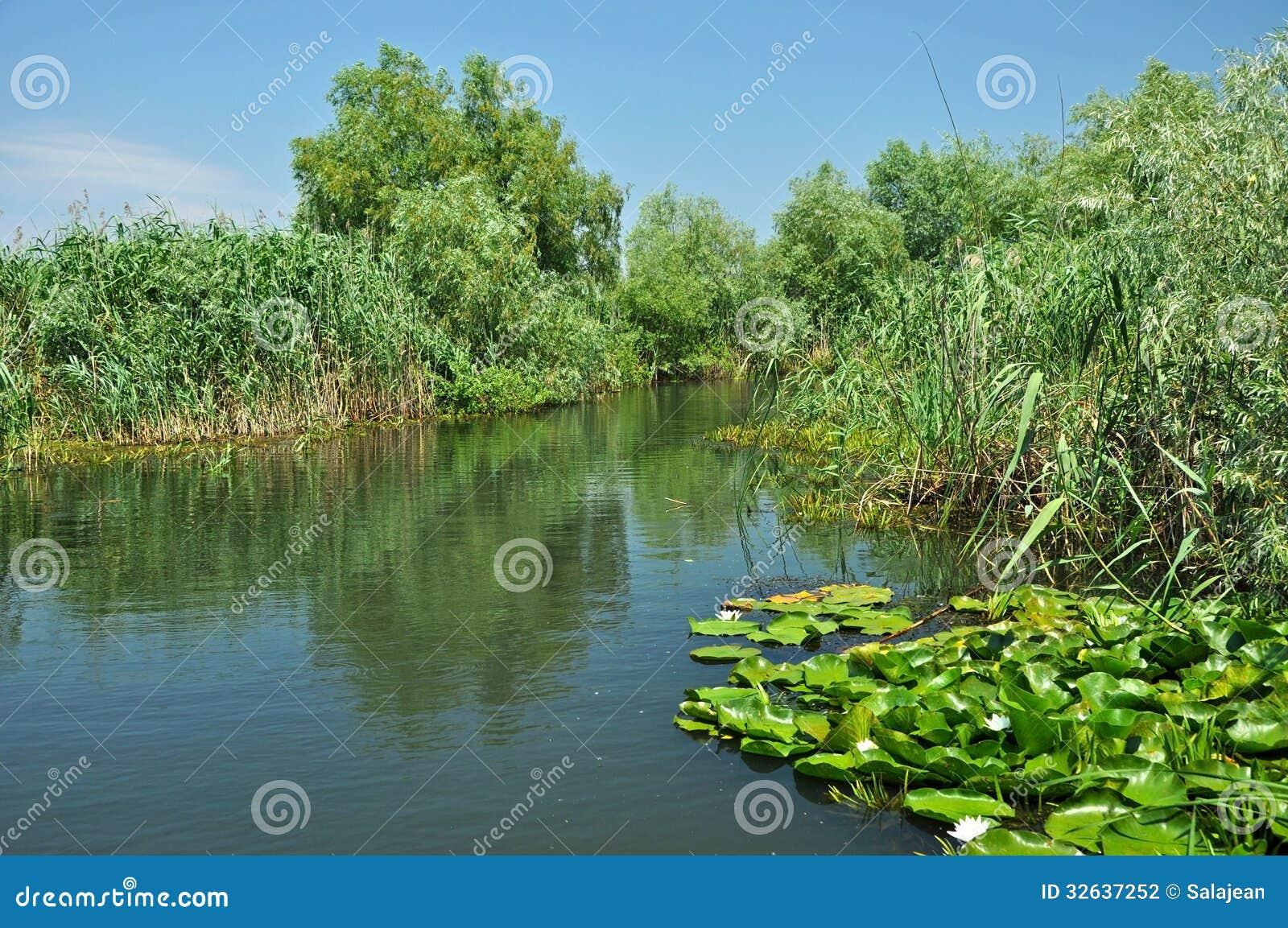 Canal de água no delta de Danúbio