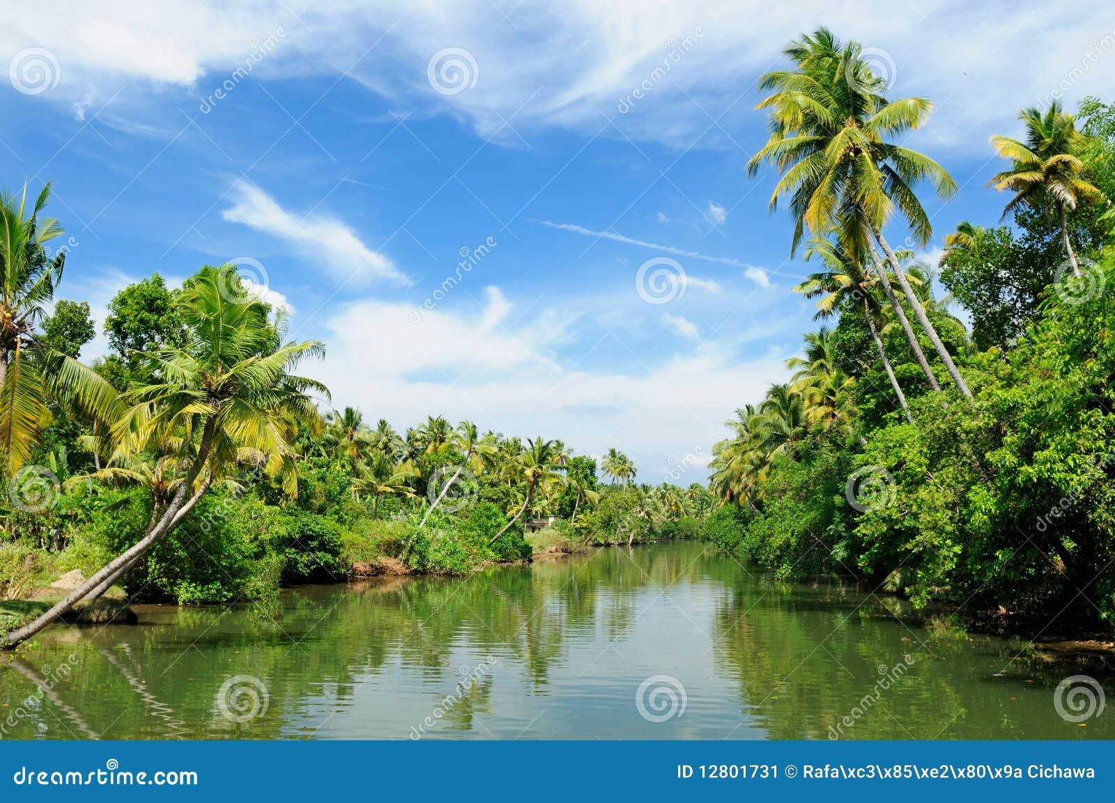 Canale del Kerala - dell India