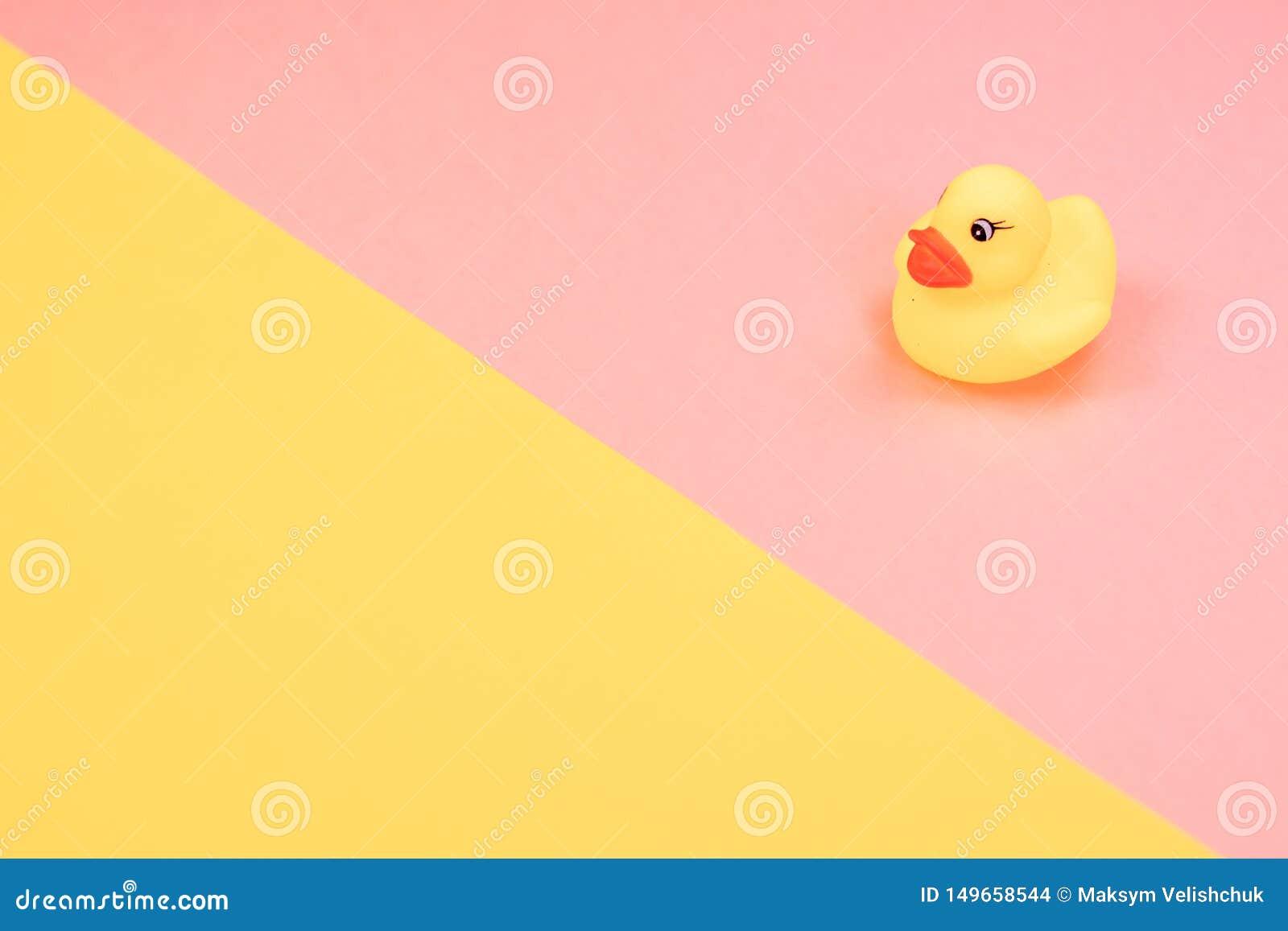 Canard en caoutchouc de bain sur le fond color? Vue sup?rieure sur le canard en caoutchouc de jouet Jeu de jouet pour le flotteme