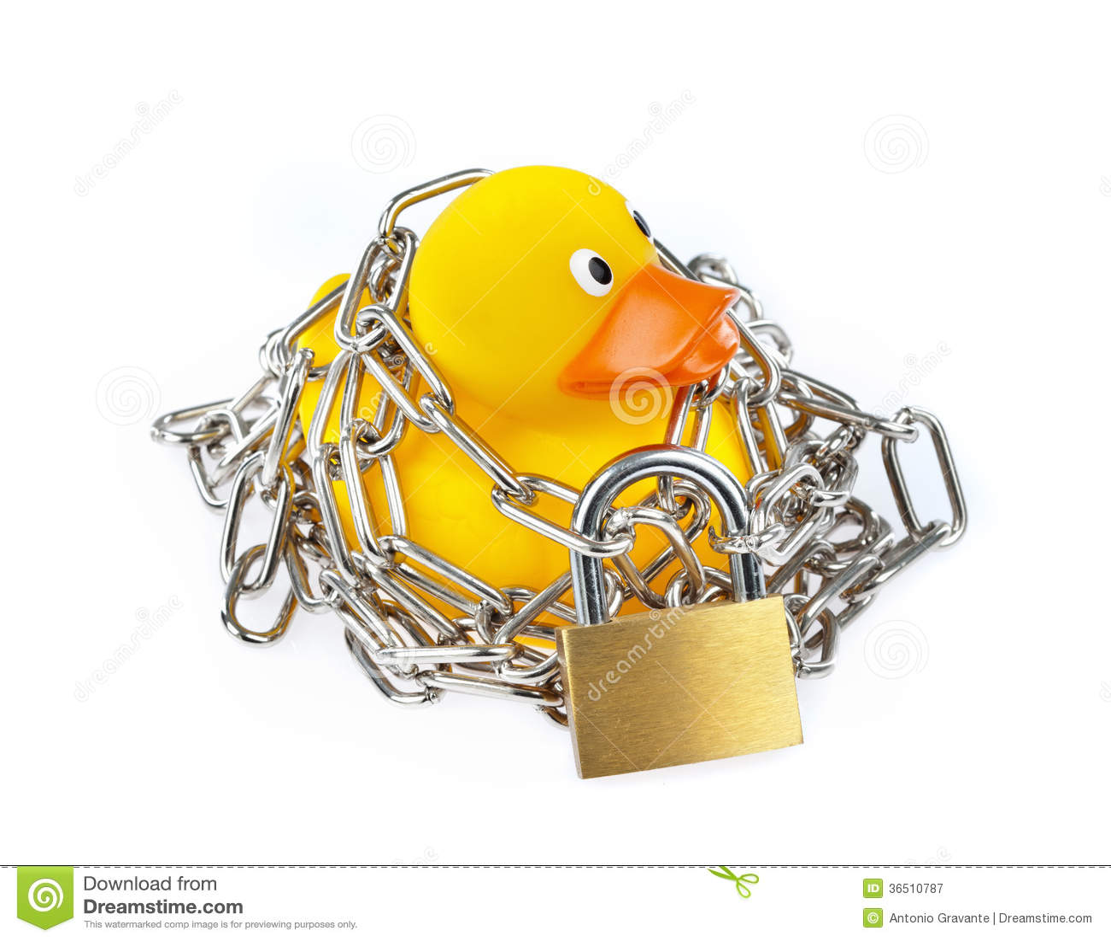 Canard en caoutchouc jaune avec la chaîne et le cadenas