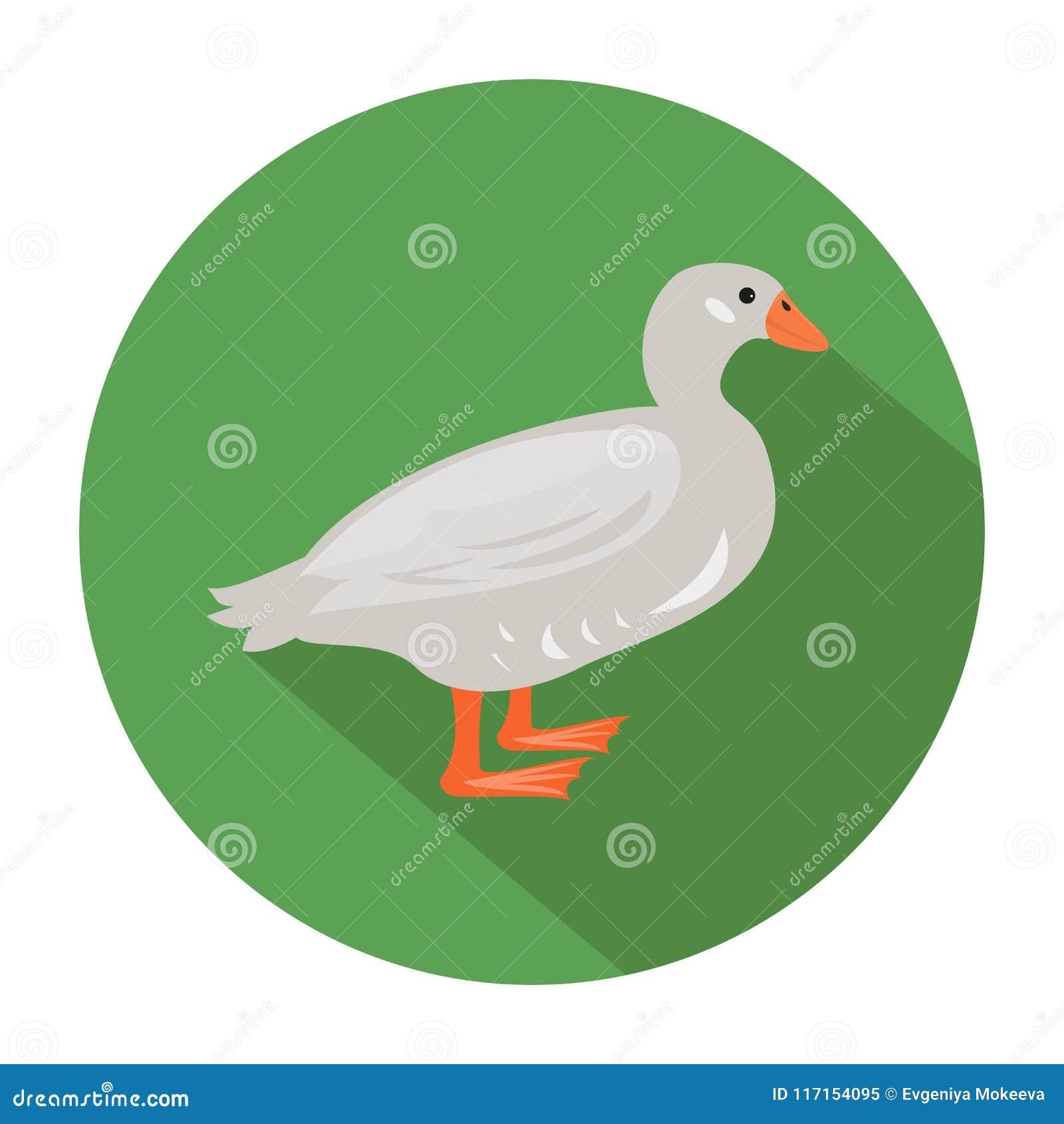 Canard mignon sur le fond vert