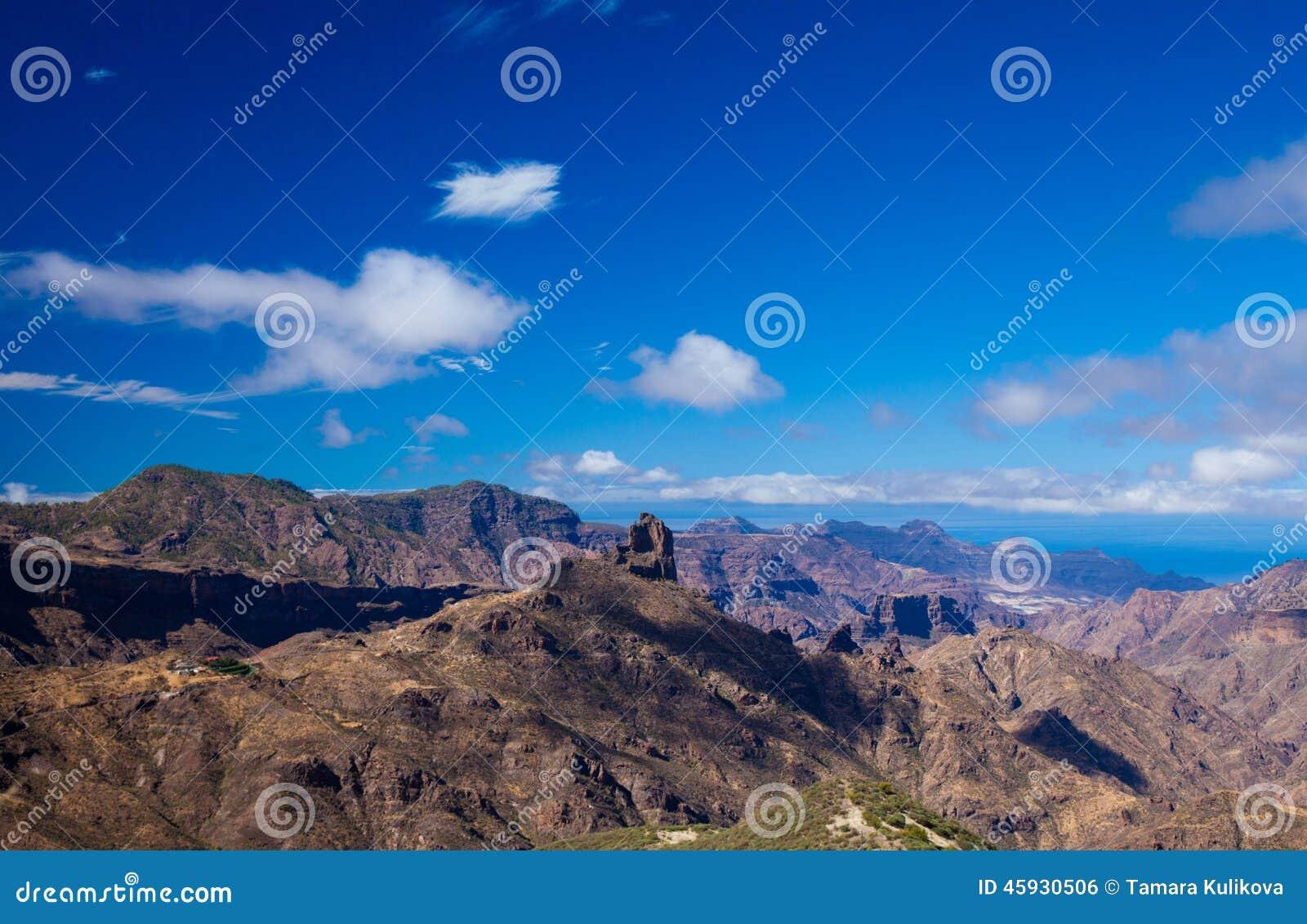 Canaria gran