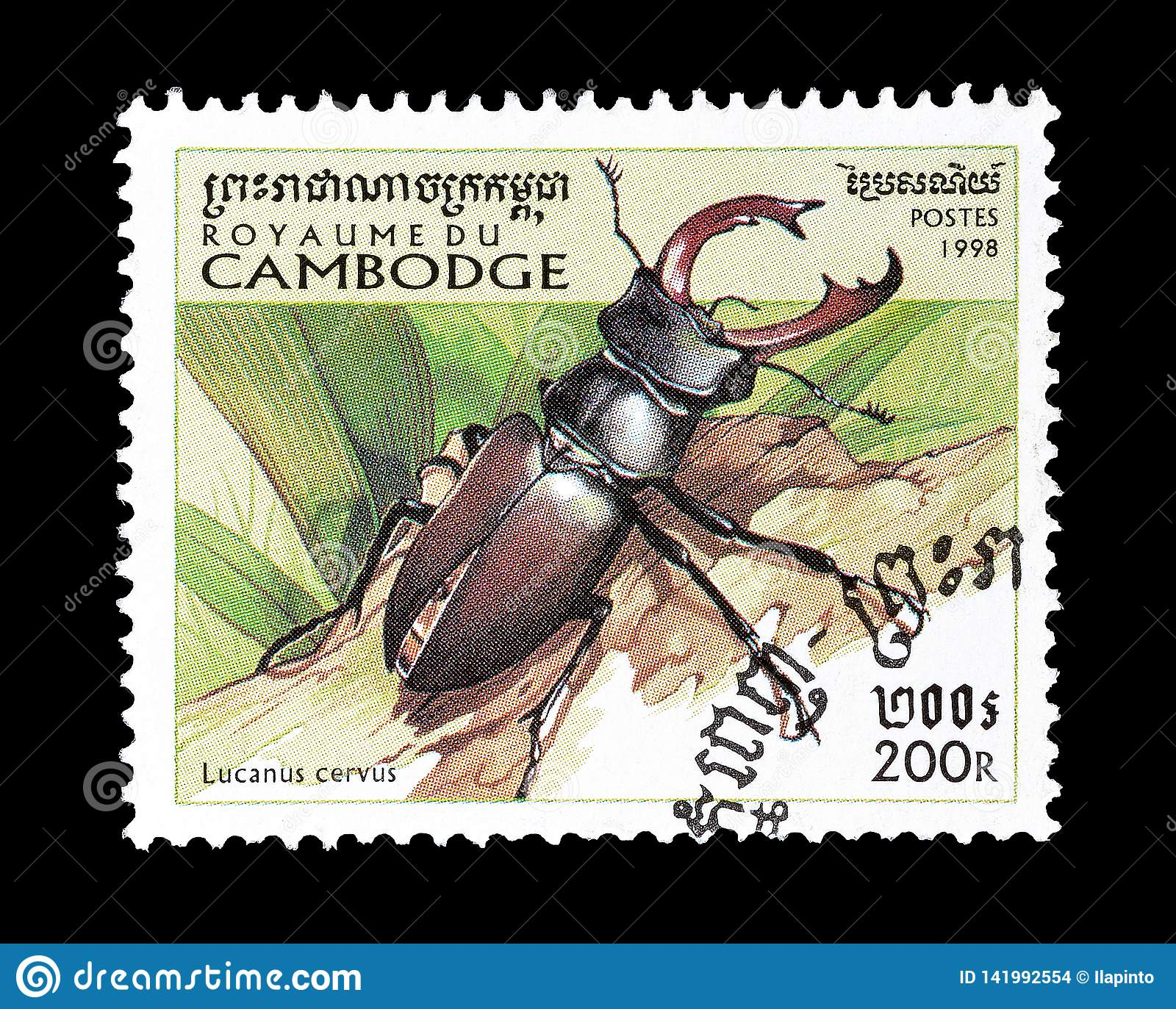 Beetles On Postage Stamps Editorial Stock Image Image Of