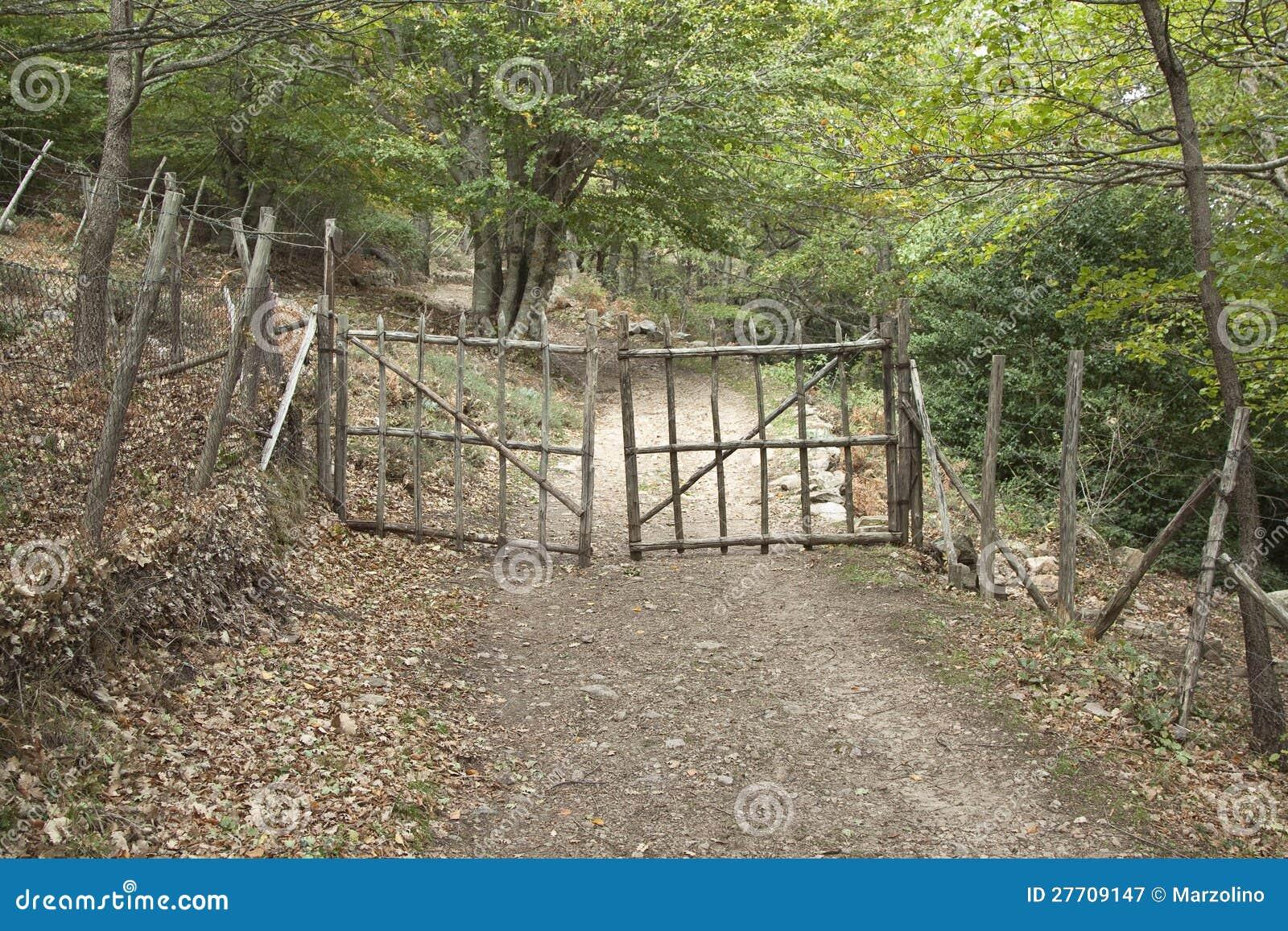 Cancello Di Legno Usato : Cancello di legno immagine stock immagine di albero