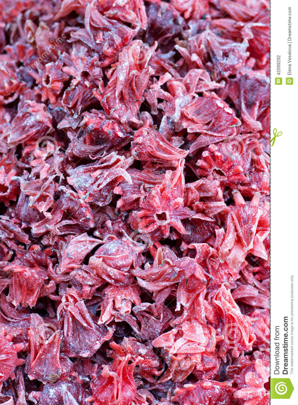 Candied Hibiscus Flowers Stock Photo Image Of Copyspace 42099292