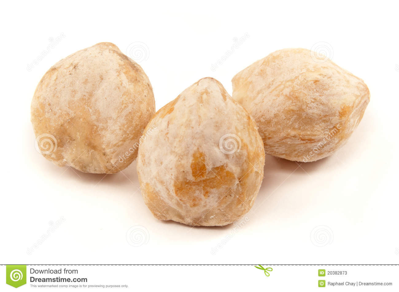 Candlenut a spice used in asian cuisine stock photos for 7 spices asian cuisine
