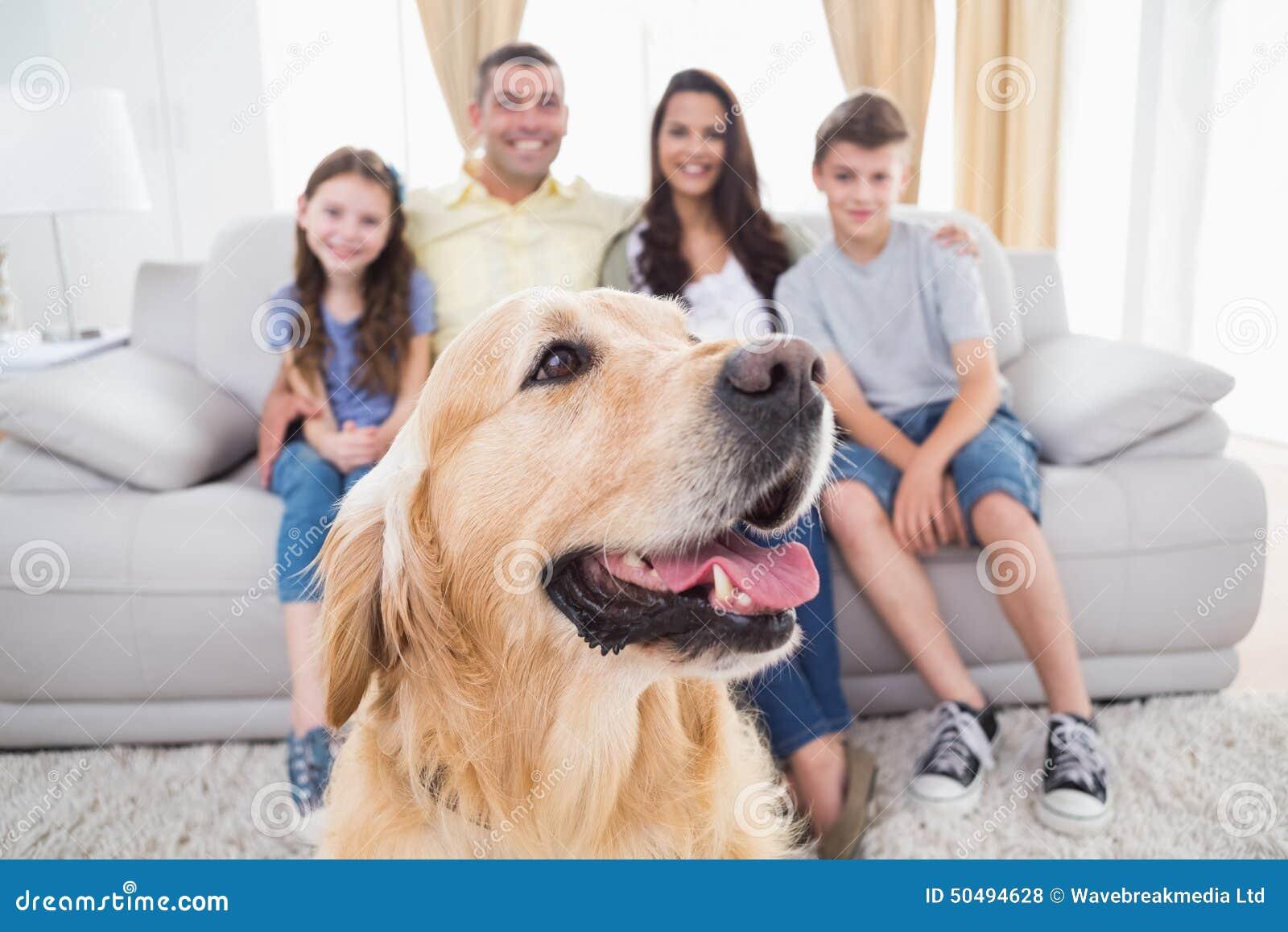 Cane che si siede con la famiglia a casa