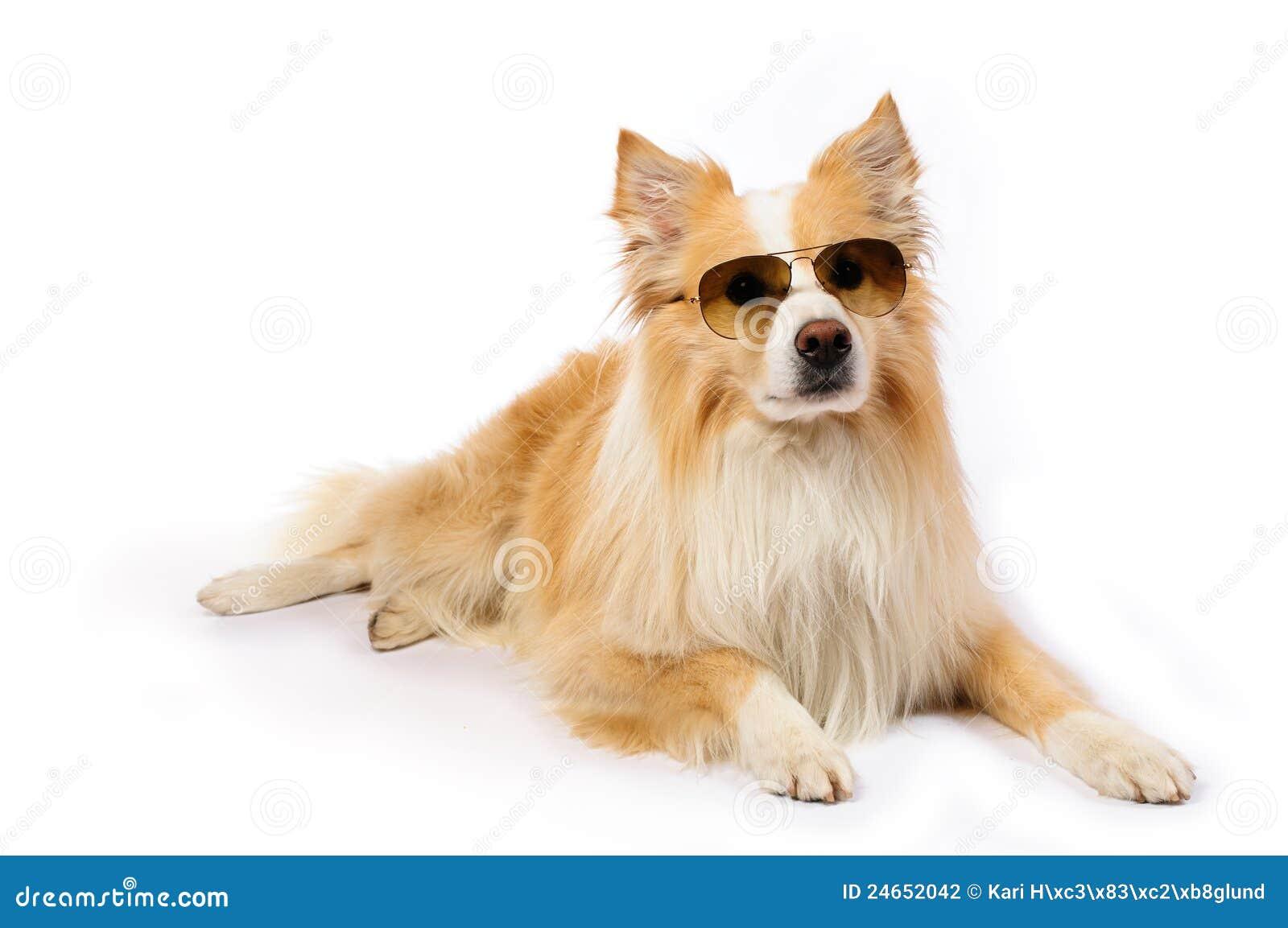 Cartone animato con occhiali da sole e grandi capelli