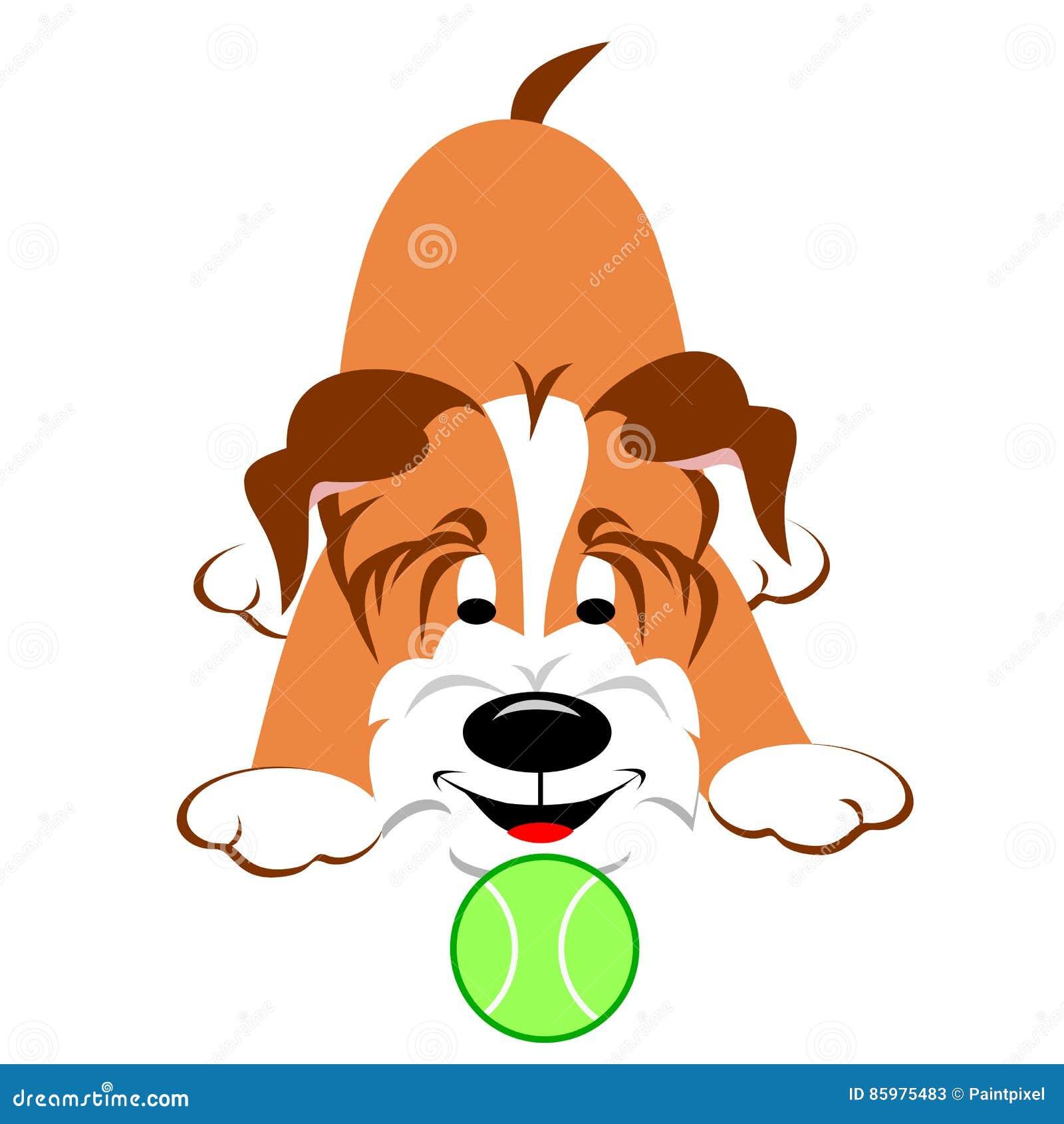 Cane con la sfera di tennis