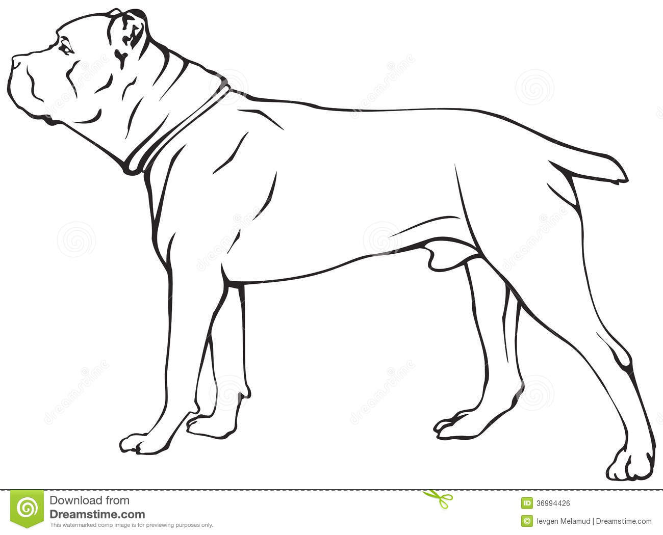 Royalty Free Stock Image Cane Corso Dog Breed Vector Illustration Show Sign Symbol Set Image36994426 on 8 dogs illustration