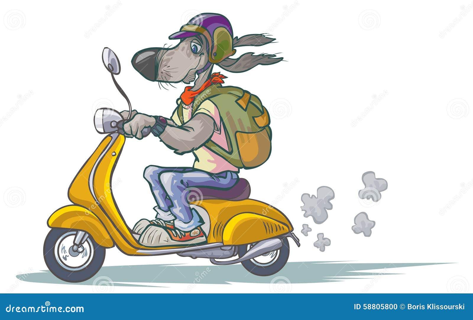 Cane del fumetto sul motorino illustrazione vettoriale for Puntura vespa cane