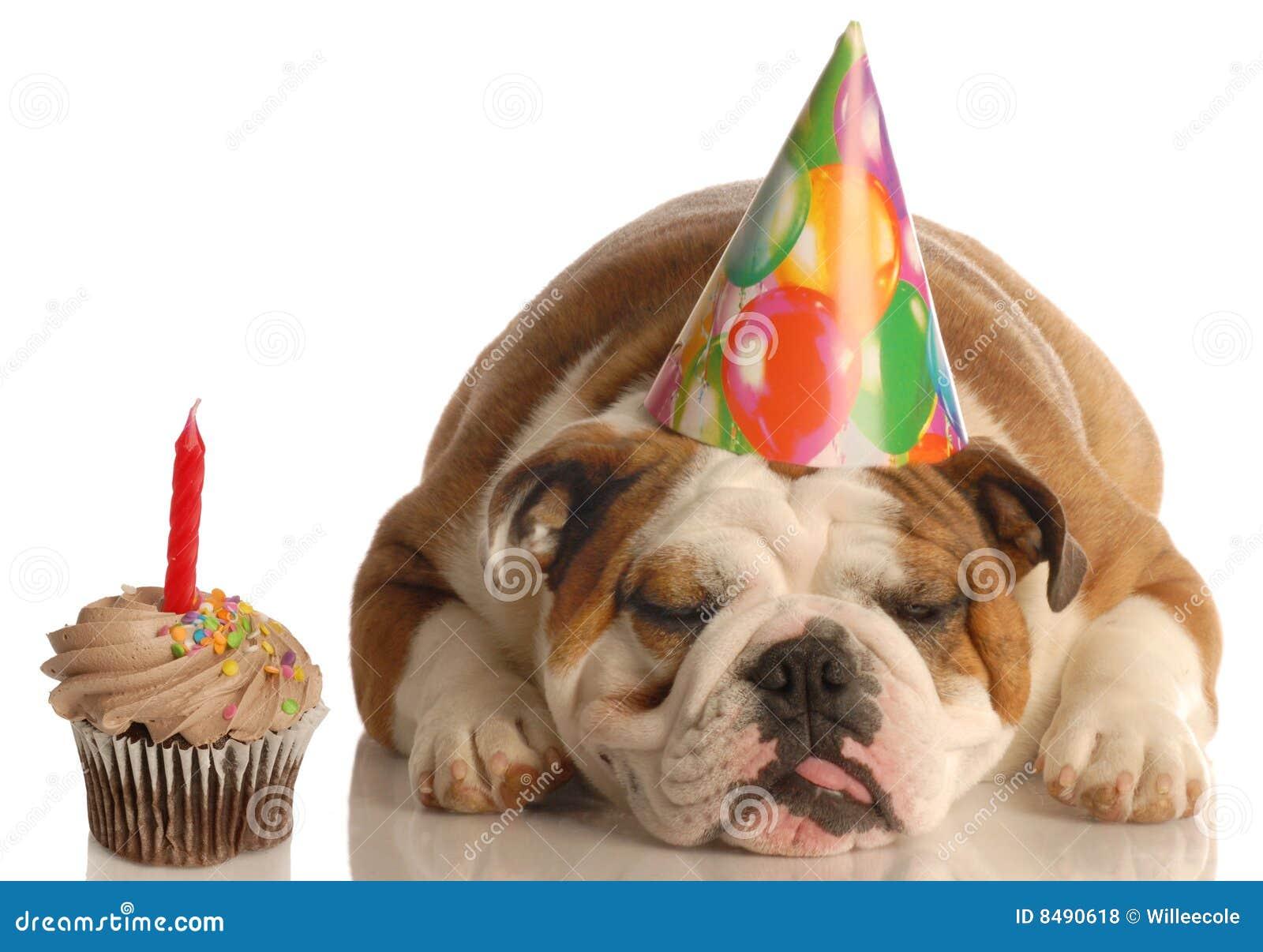 Cane di compleanno