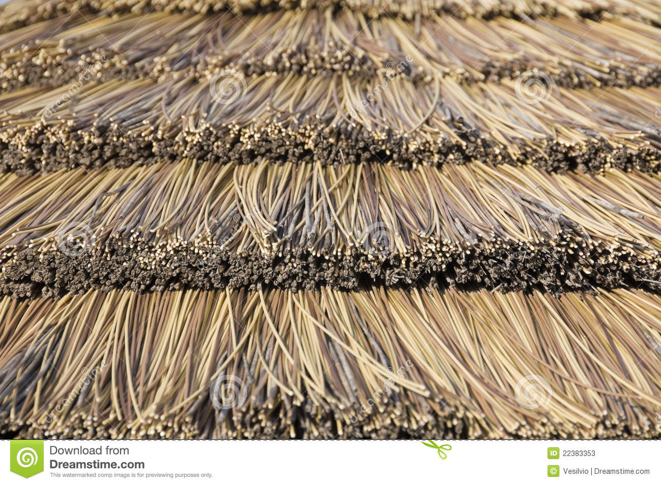 Cane Roof Royalty Free Stock Photo Cartoondealer Com