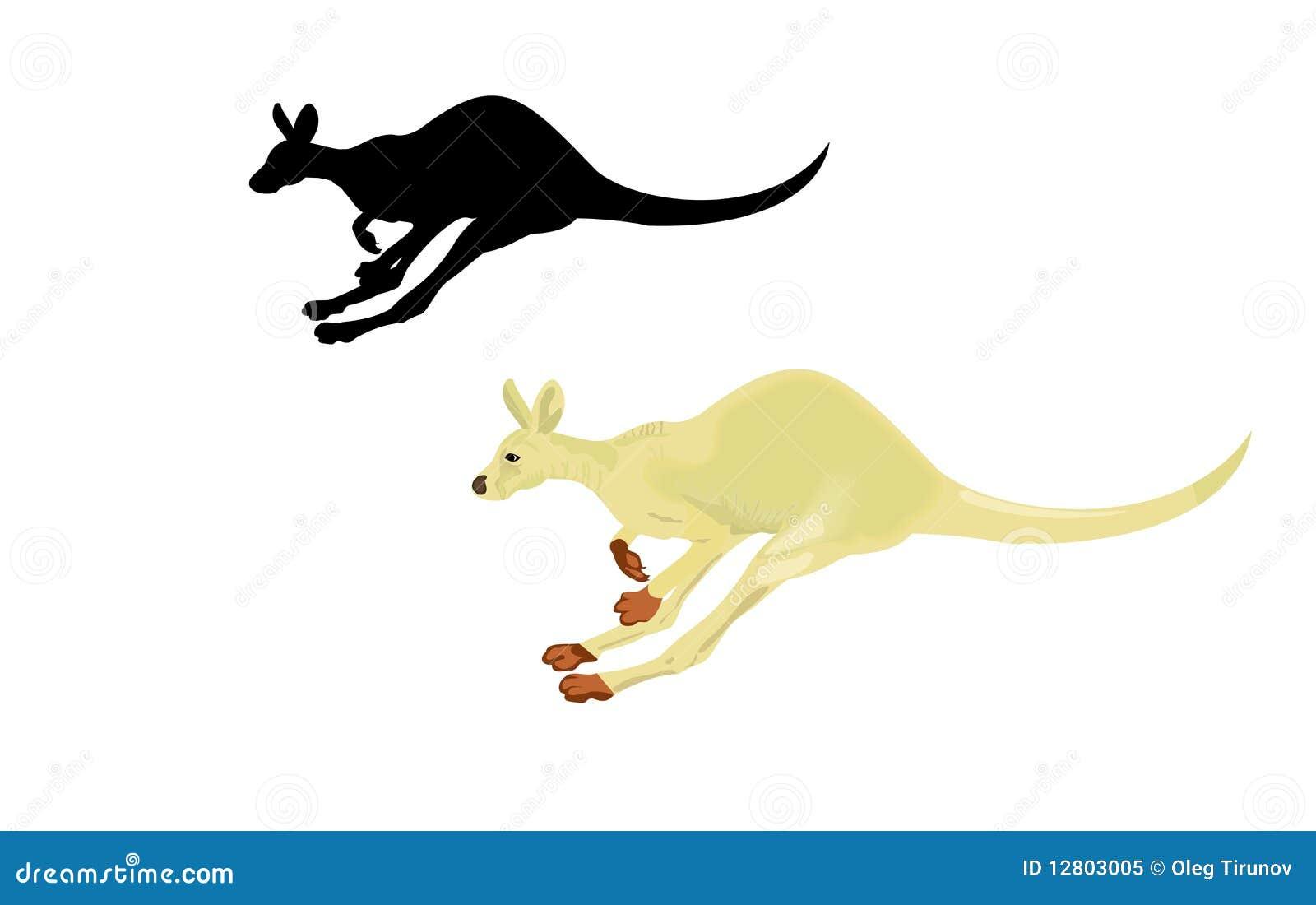 Canguru Running isolado em um fundo branco