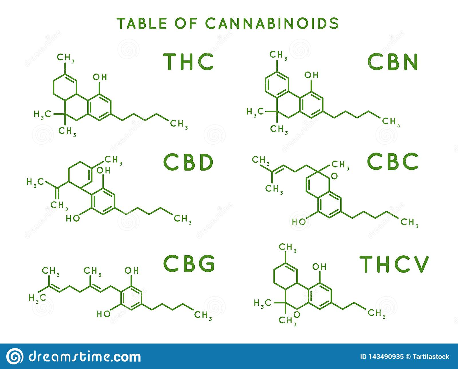 Cannabinoid structure. Cannabidiol molecular structures, THC and CBD formula. Marijuana or cannabis molecules vector